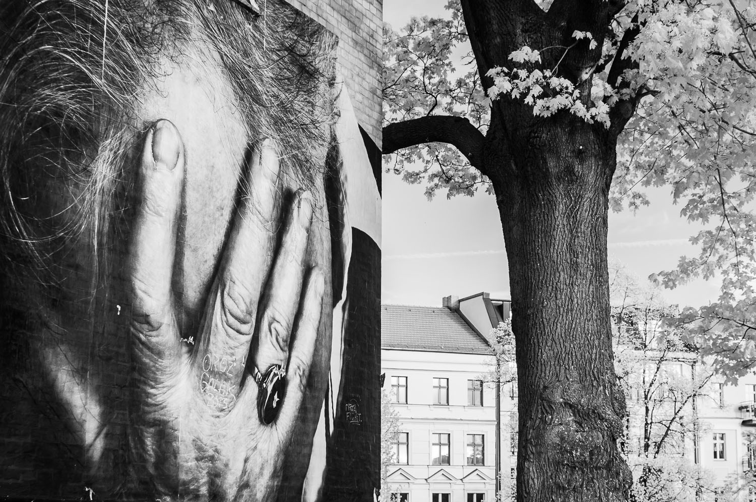 """What Are You Doing?""  Wrinkles in the City - Berlin    © Dustin Main 2013"