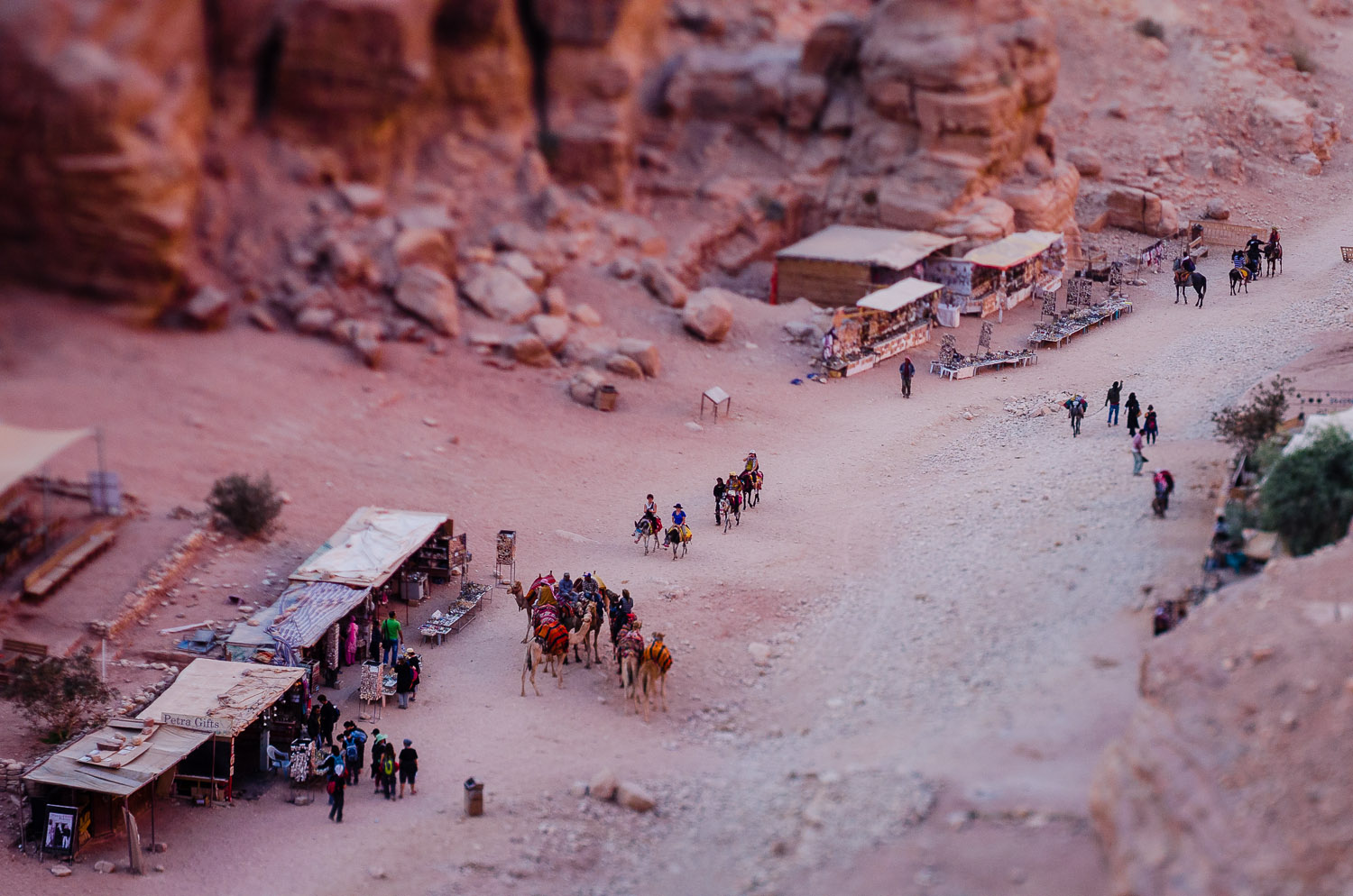 Looking down on Petra: The Pink City.  © Dustin Main 2013
