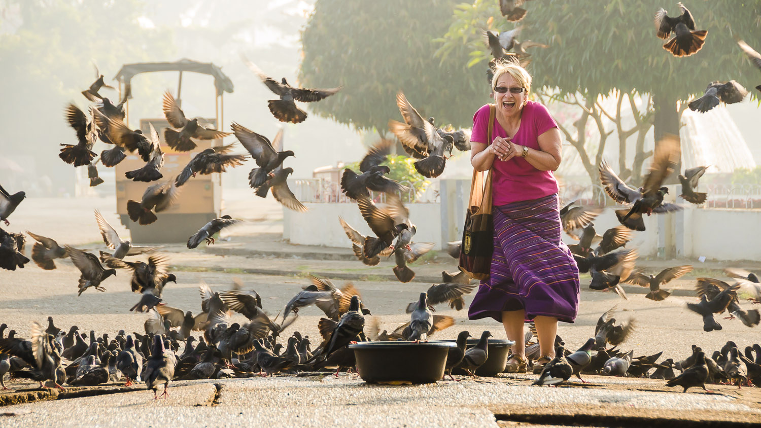 Meeting the birds on the streets of Yangon © Dustin Main 2014
