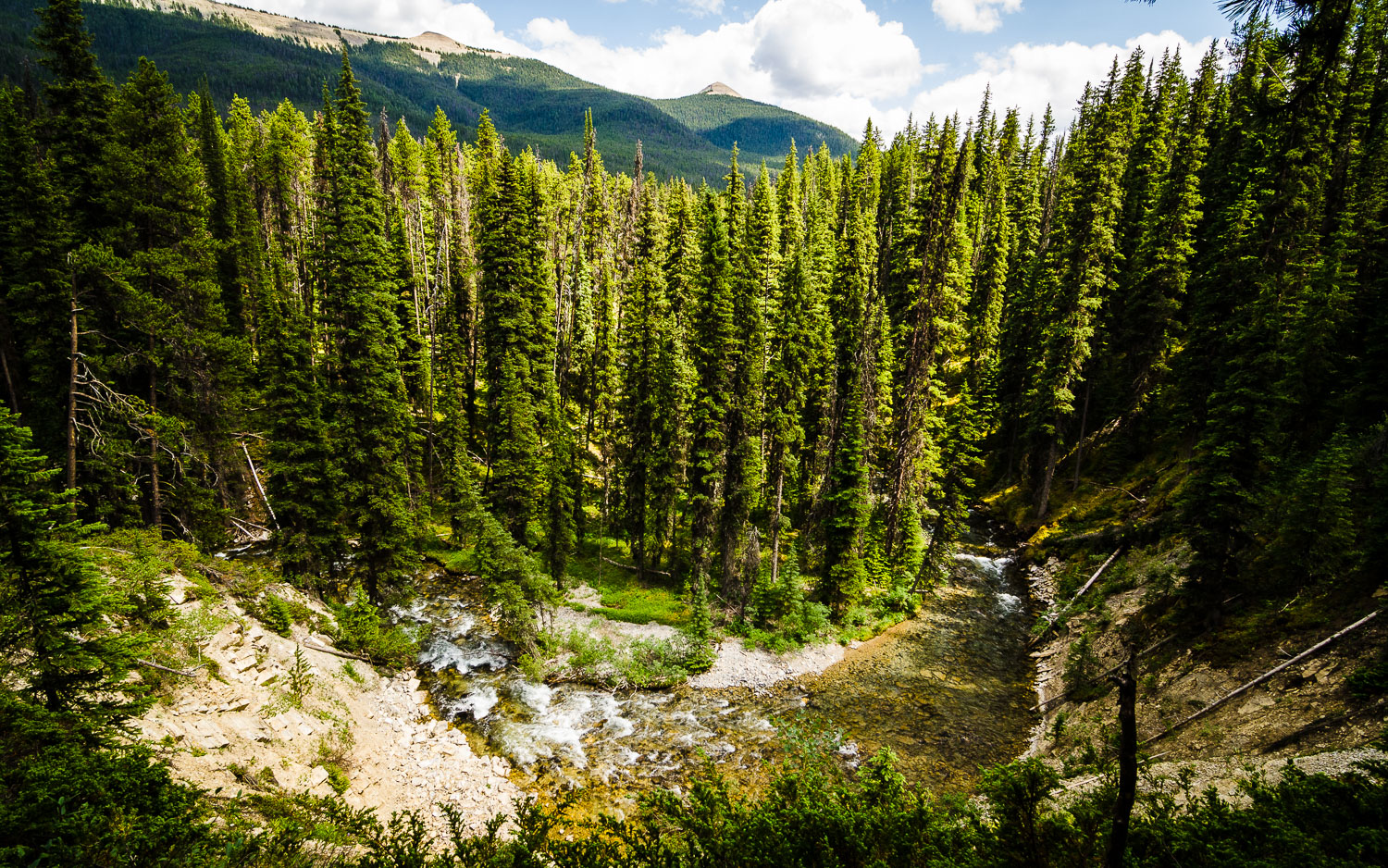 Lussier River bend.  Top of the World Provincial Park.   © Dustin Main 2014