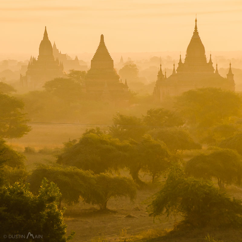 A golden haze casts its light over temples and trees in Bagan, Myanmar / Burma. © Dustin Main 2014