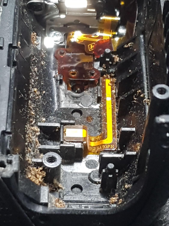 a7ii-camera-ants-4-2.jpg