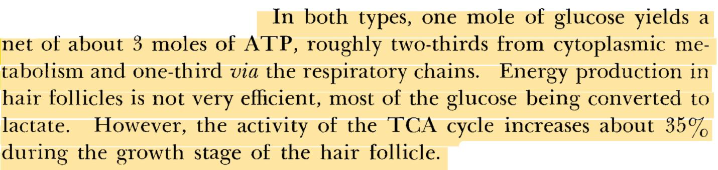 Adachi, K., et al. Human Hair Follicles: Metabolism and Control Mechanisms. J. Soc. Cosmet. Chem., 21, 901-924 (Dec. 9, 1970).