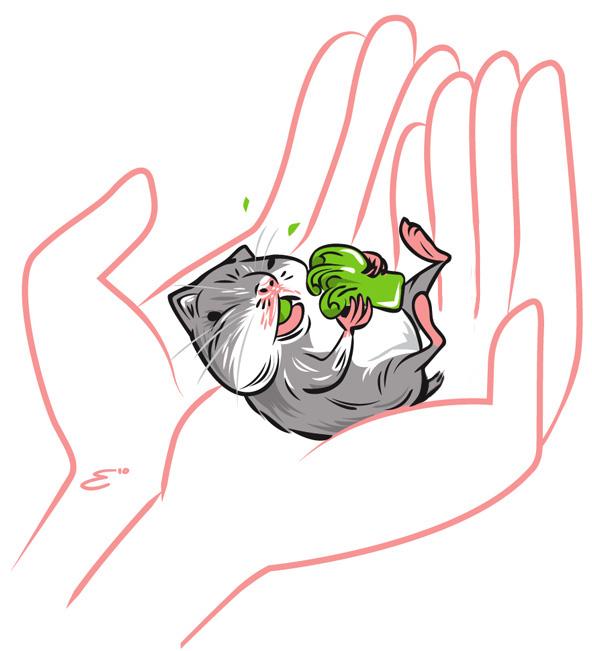 baby-hamster-eating-broccoli_4927232919_o.jpg