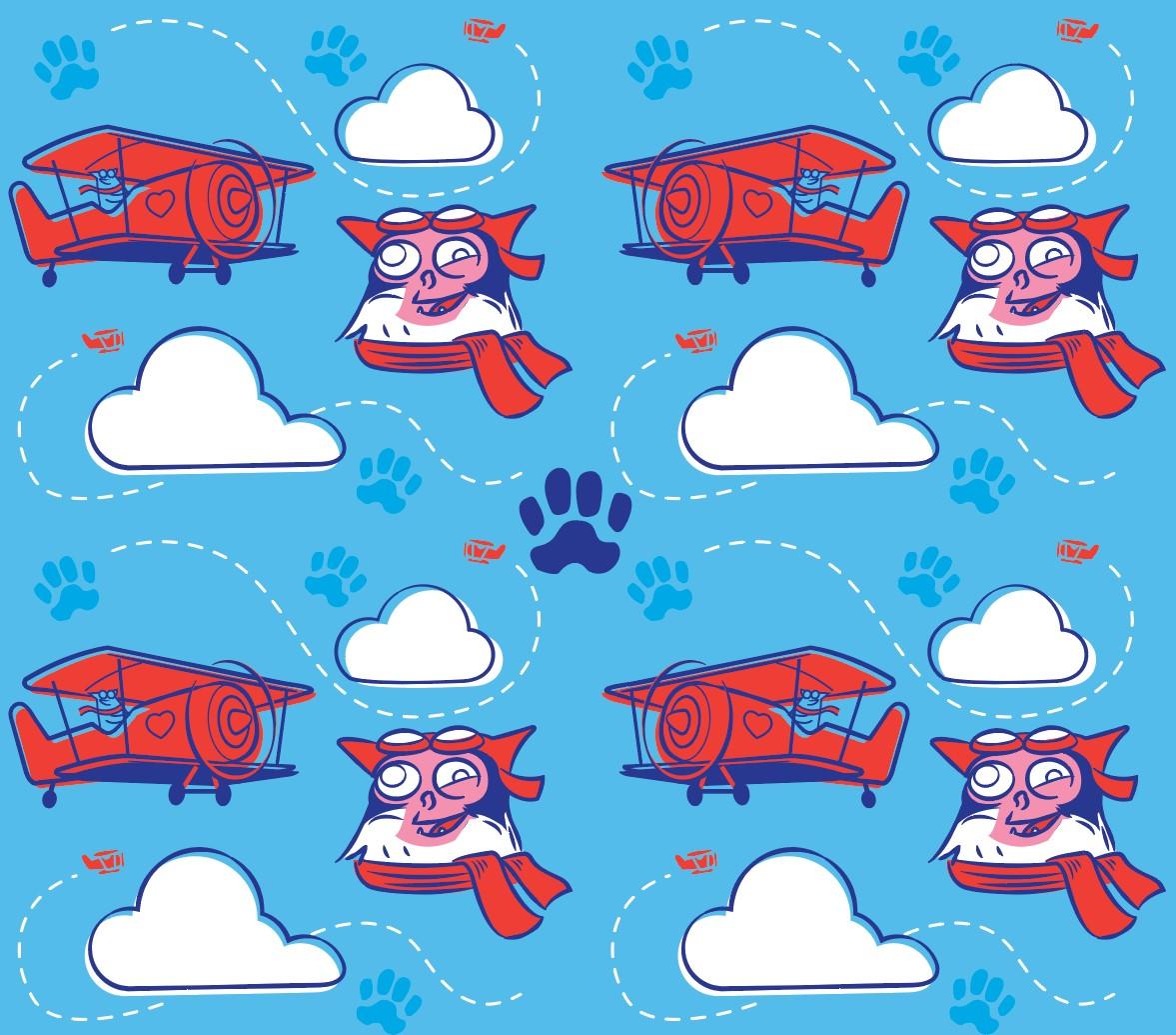 chase_biplane_patternLOWRESfpo.jpg