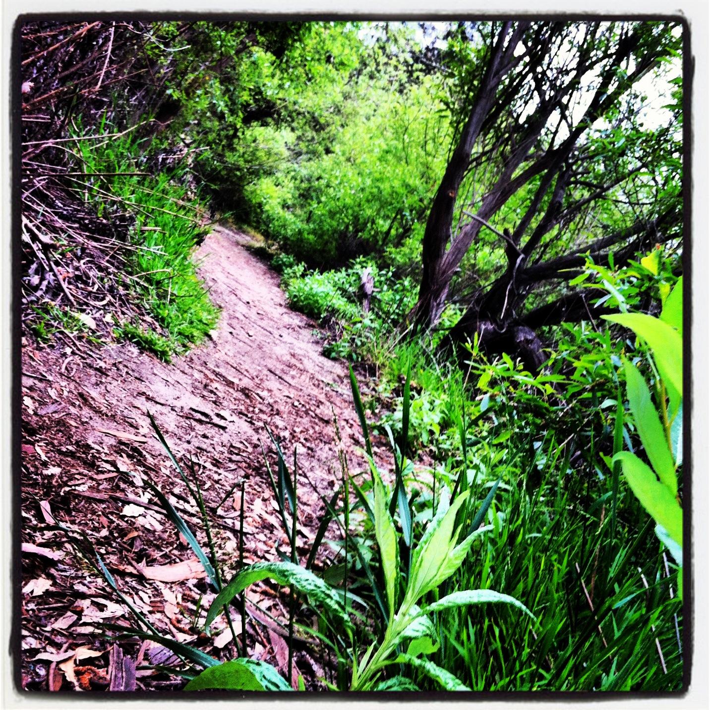 La Orilla Trail