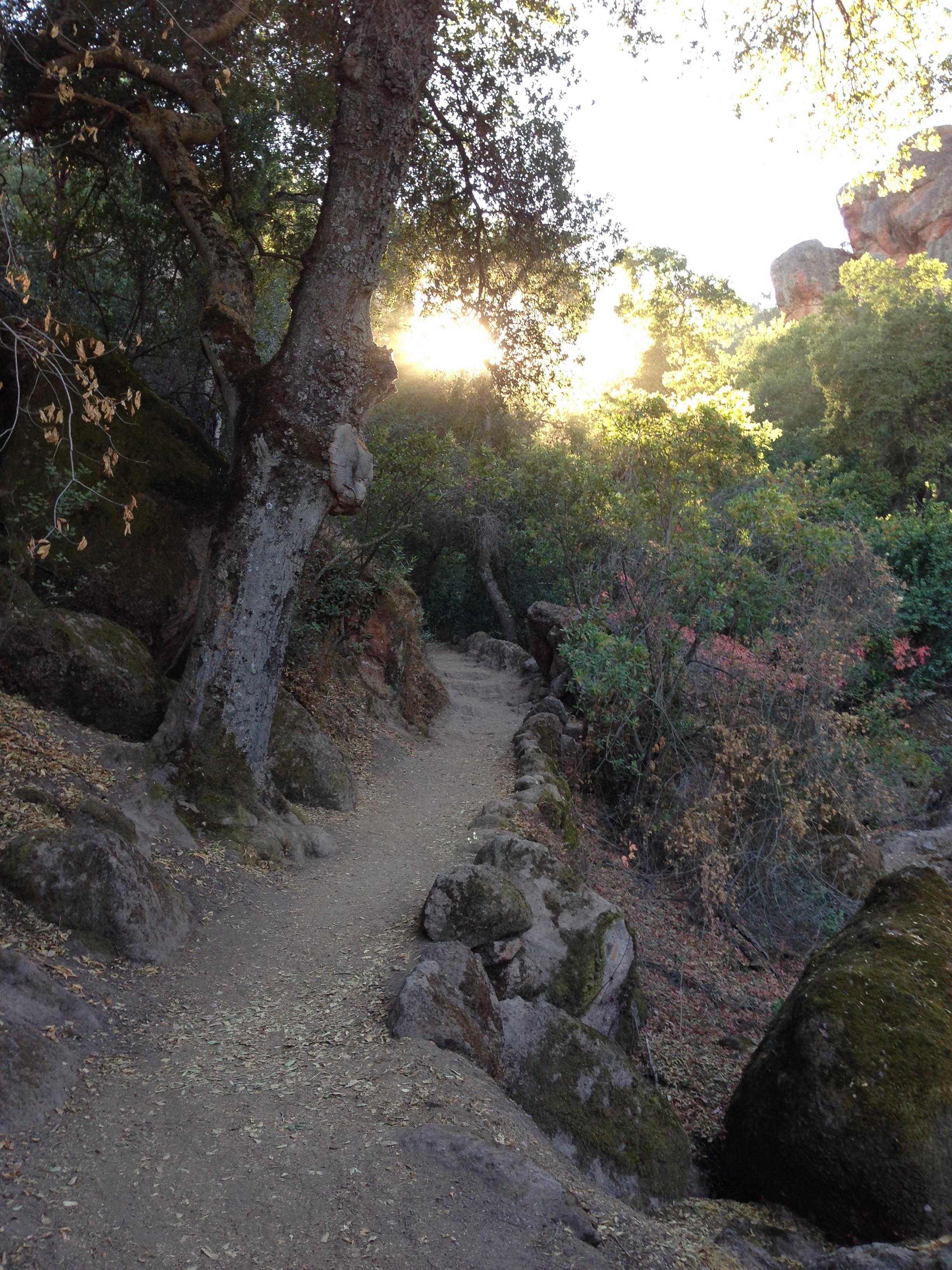 Start of Bear Gulch Trail