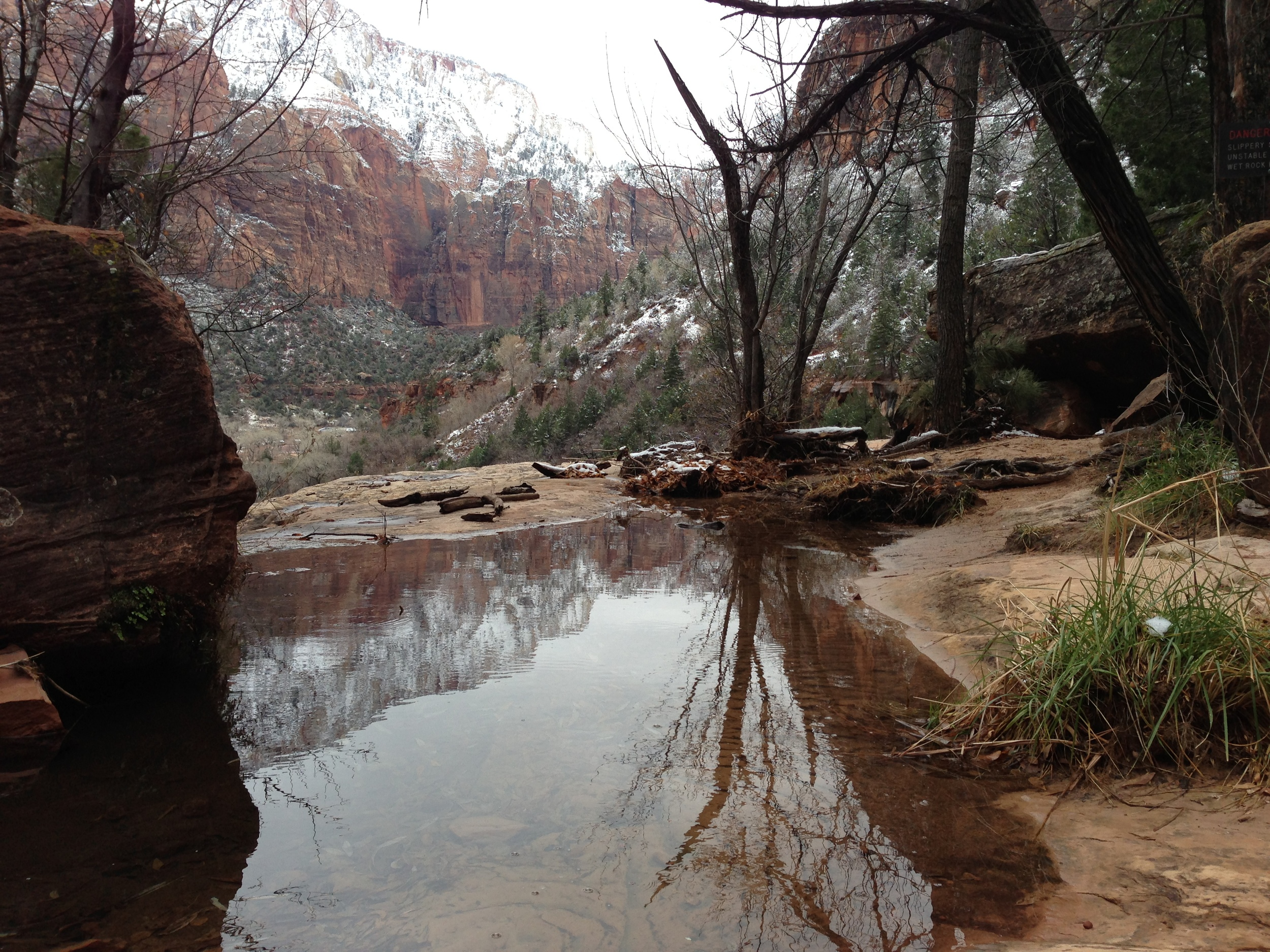 Middle Emerald Pool, Zion Canyon