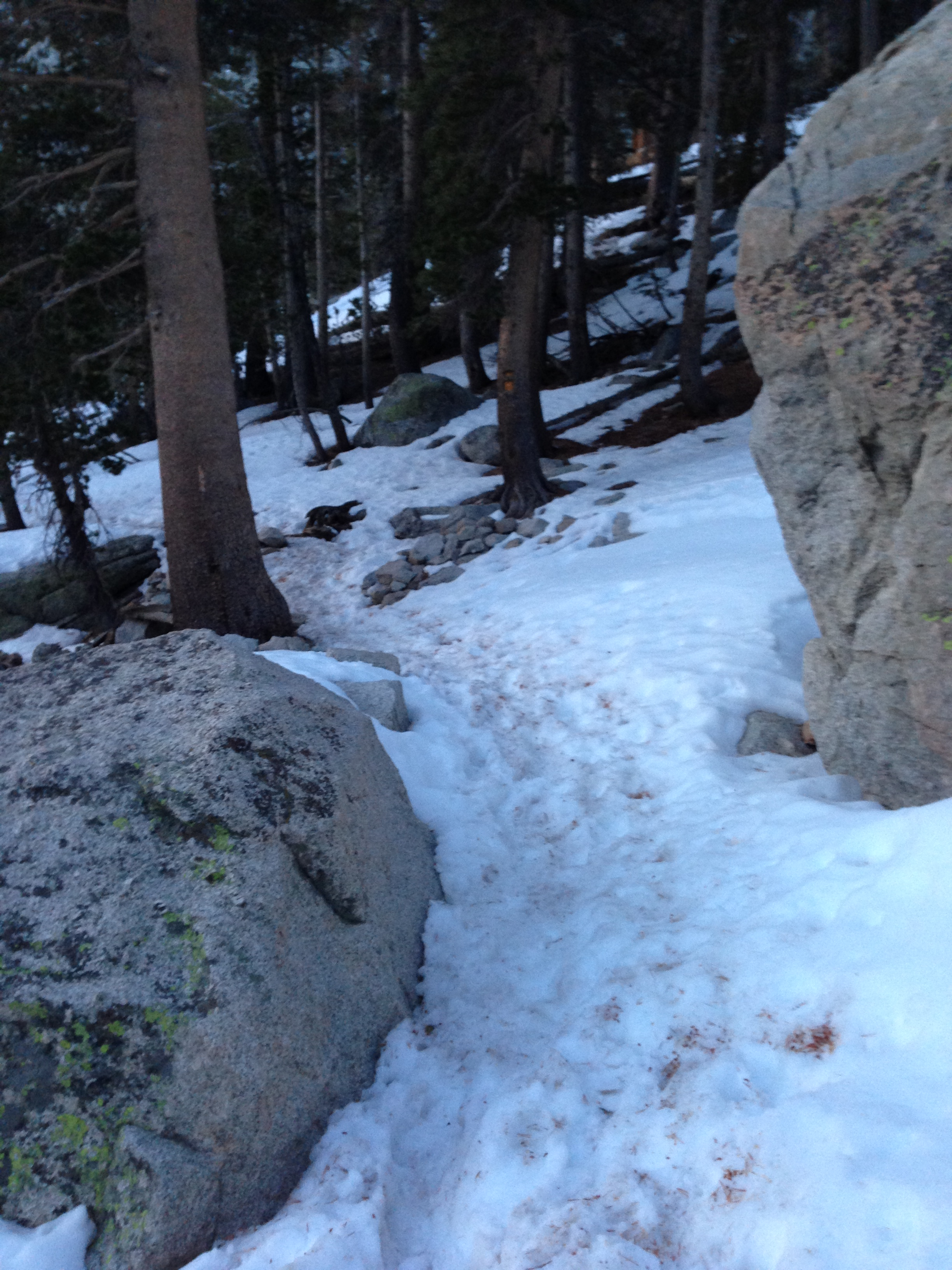 "First ""serious"" snow, near Lone Pine Lake, Mt. Whitney Trail, April 8, 2013"
