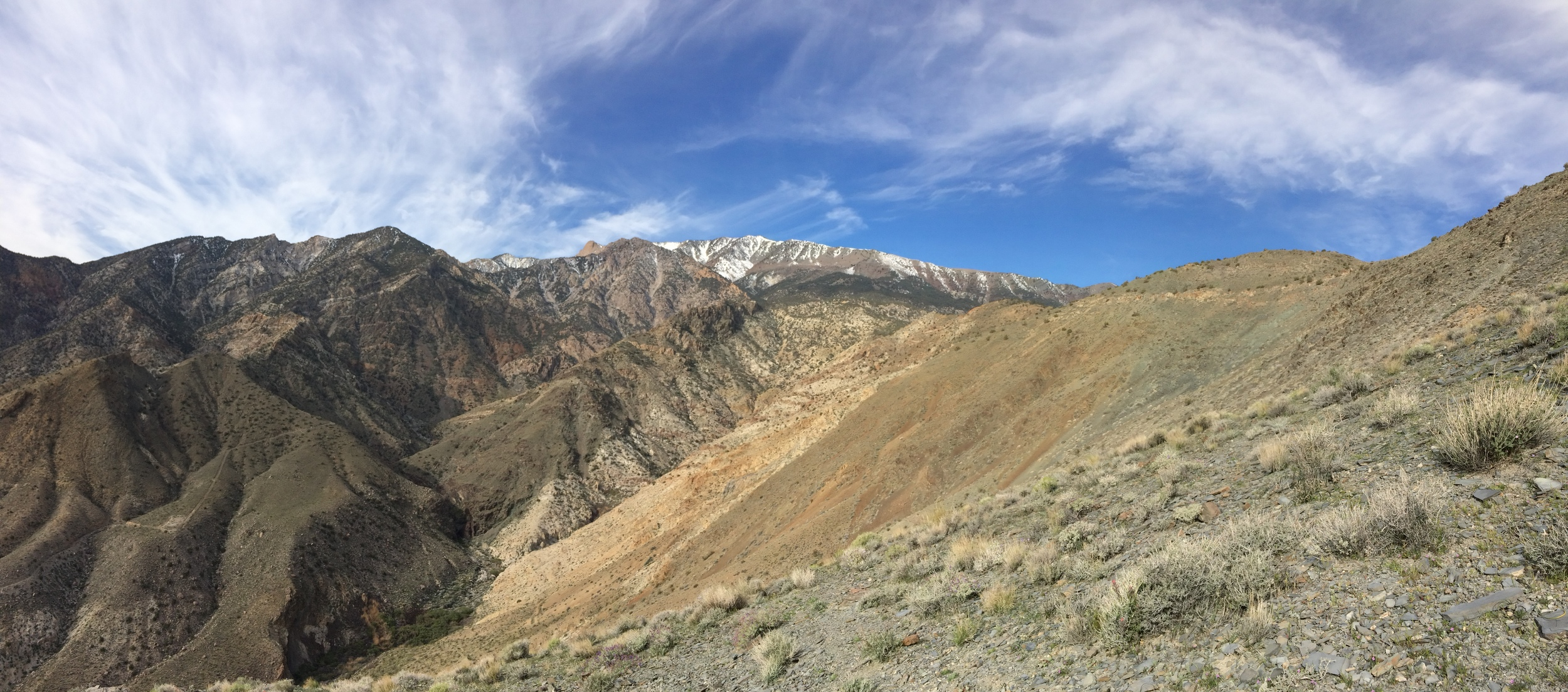 Telescope Peak, March 2015, as seen from the Shorty's Well Route