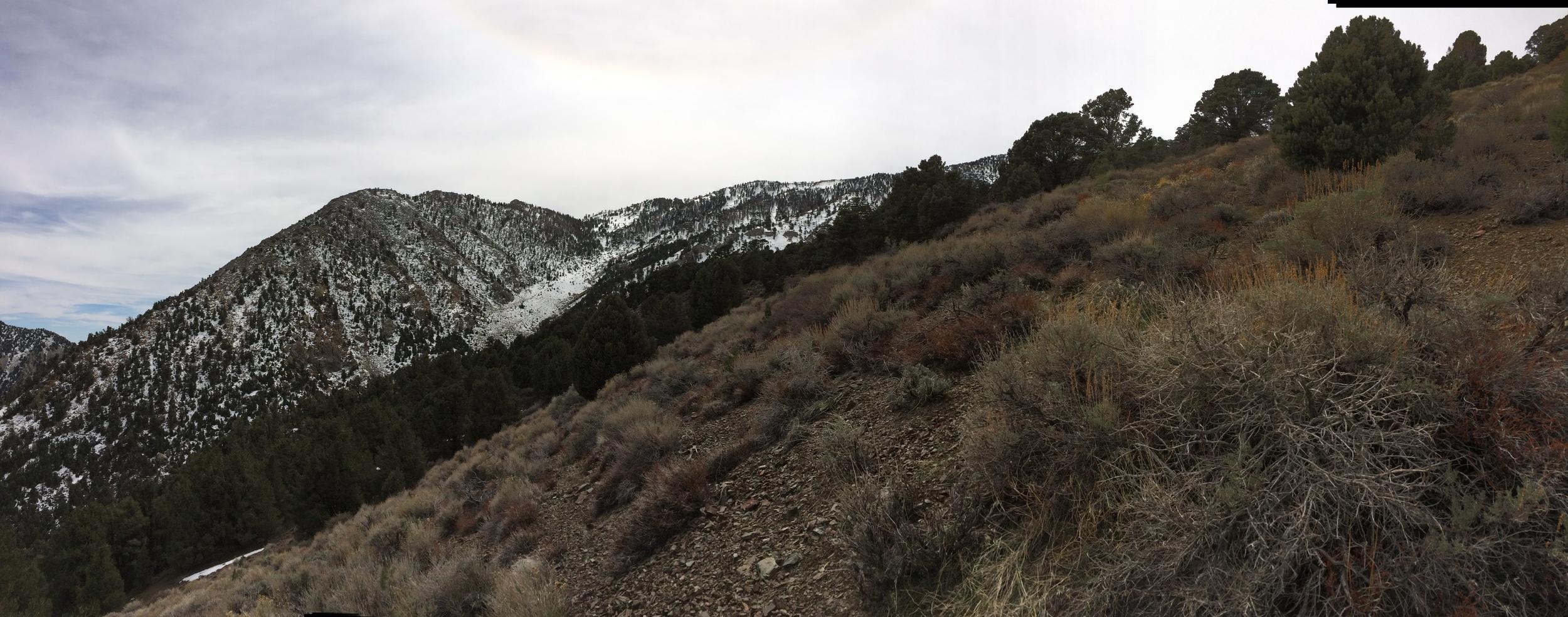 Panamint Range, Death Valley National Park, March 2015