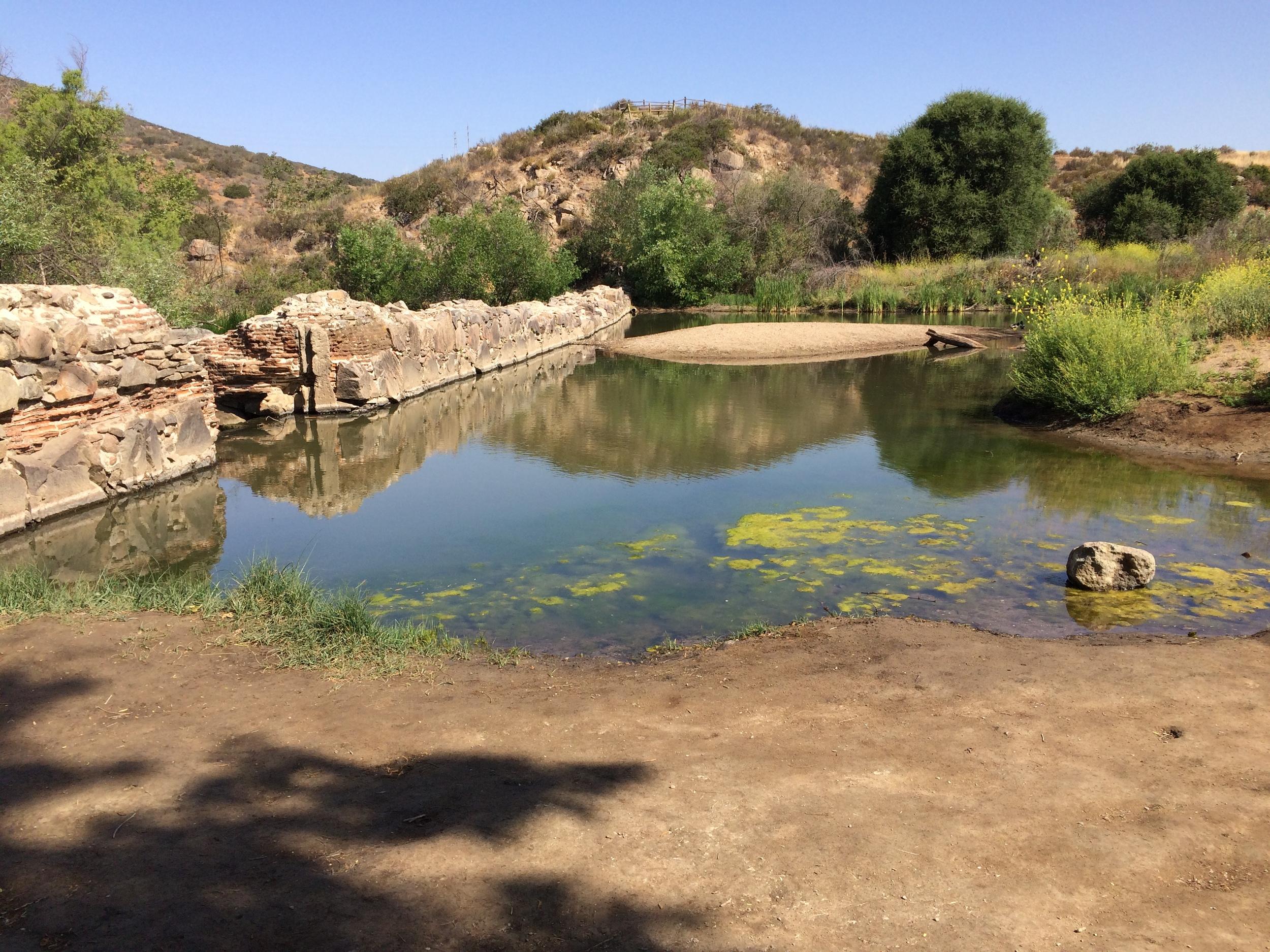 Old Mission Dam, April 2015