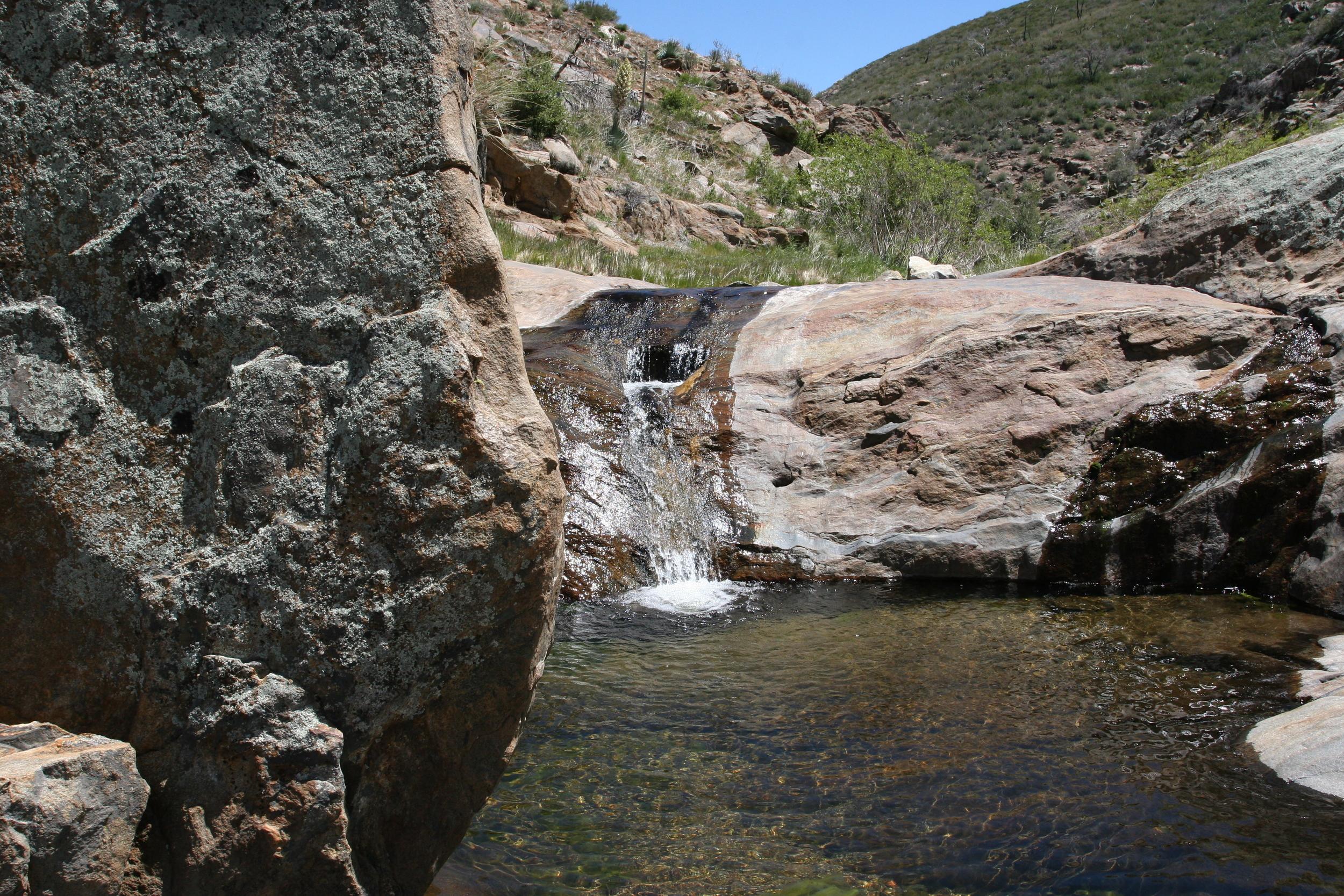 Harper's Creek, May 2009