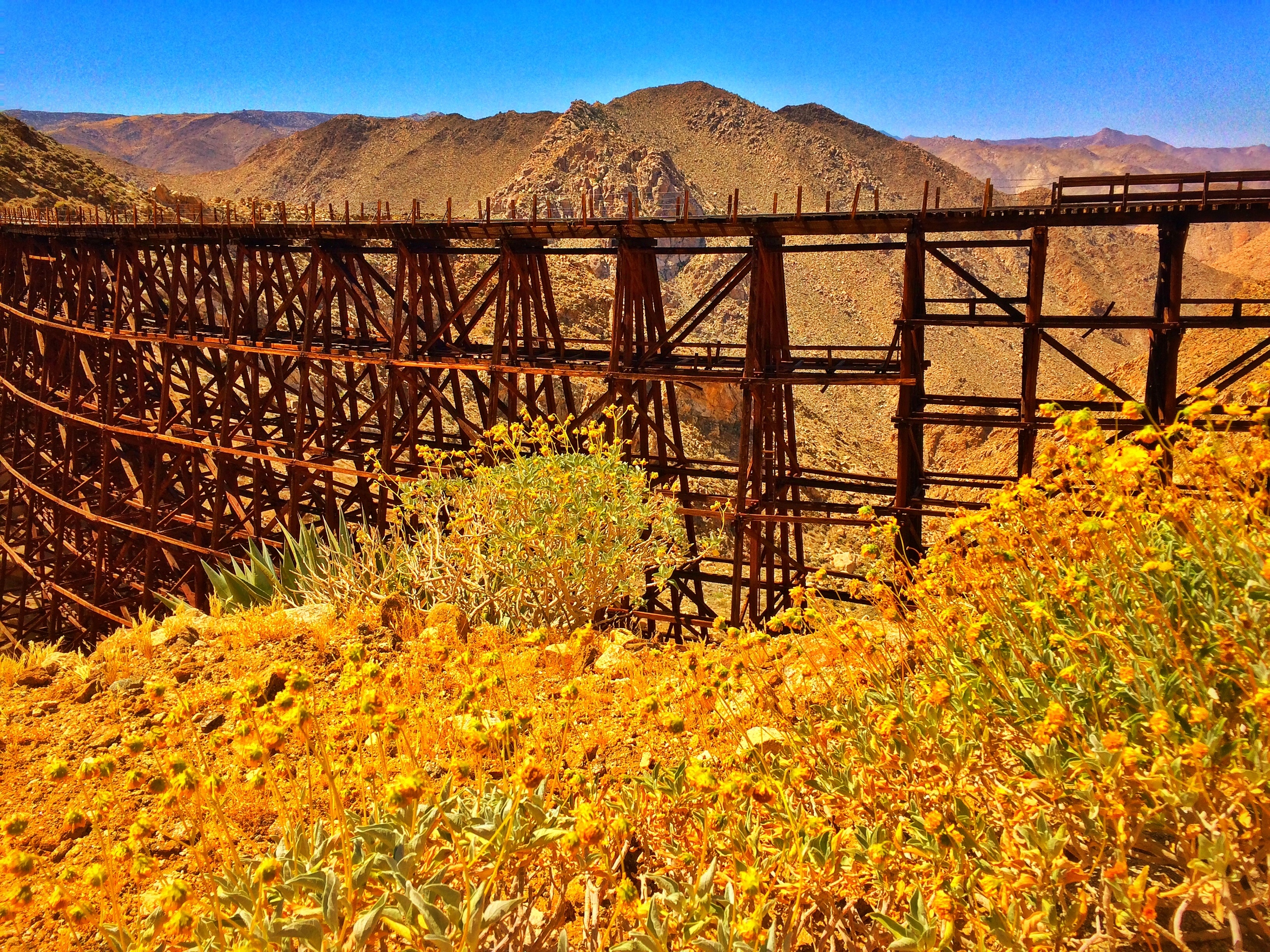 The Anza-Borrego Desert offers many adventure opportunities, like the Goat Canyon Trestle hike, and many overnight opportunities as well.
