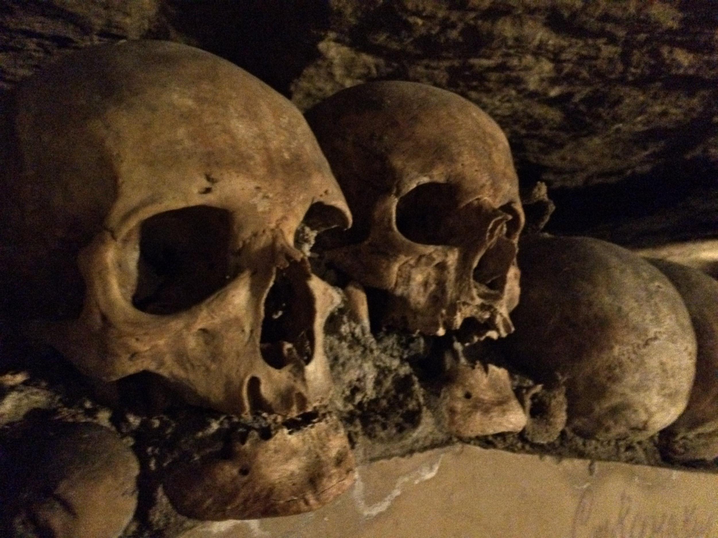 Human remains, Paris Catacombs