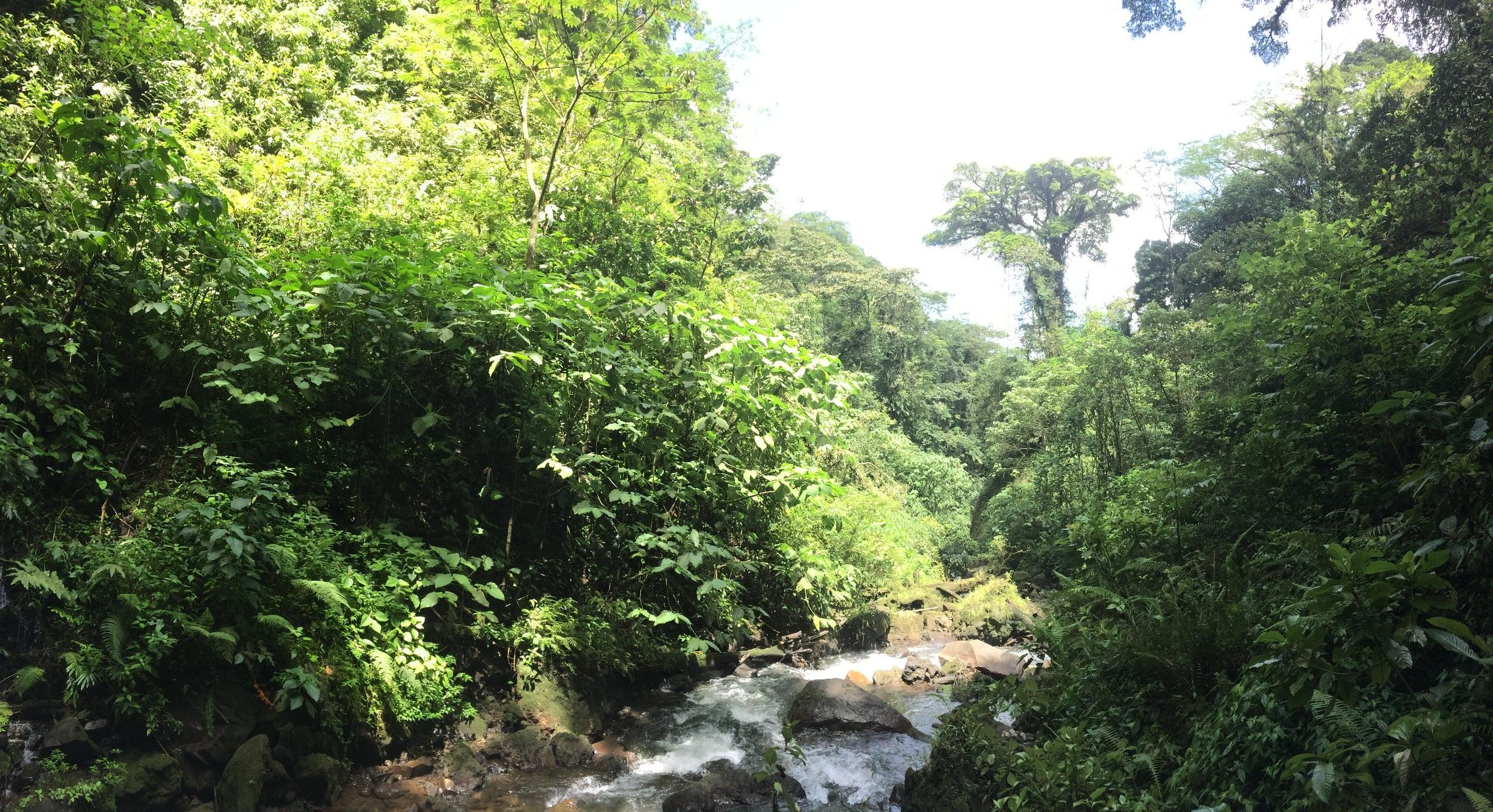 Danta River, Arenal Volcano National Park