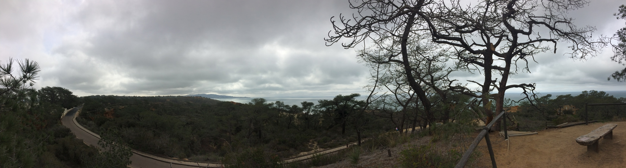 High Point Overlook, Torrey Pines State Reserve