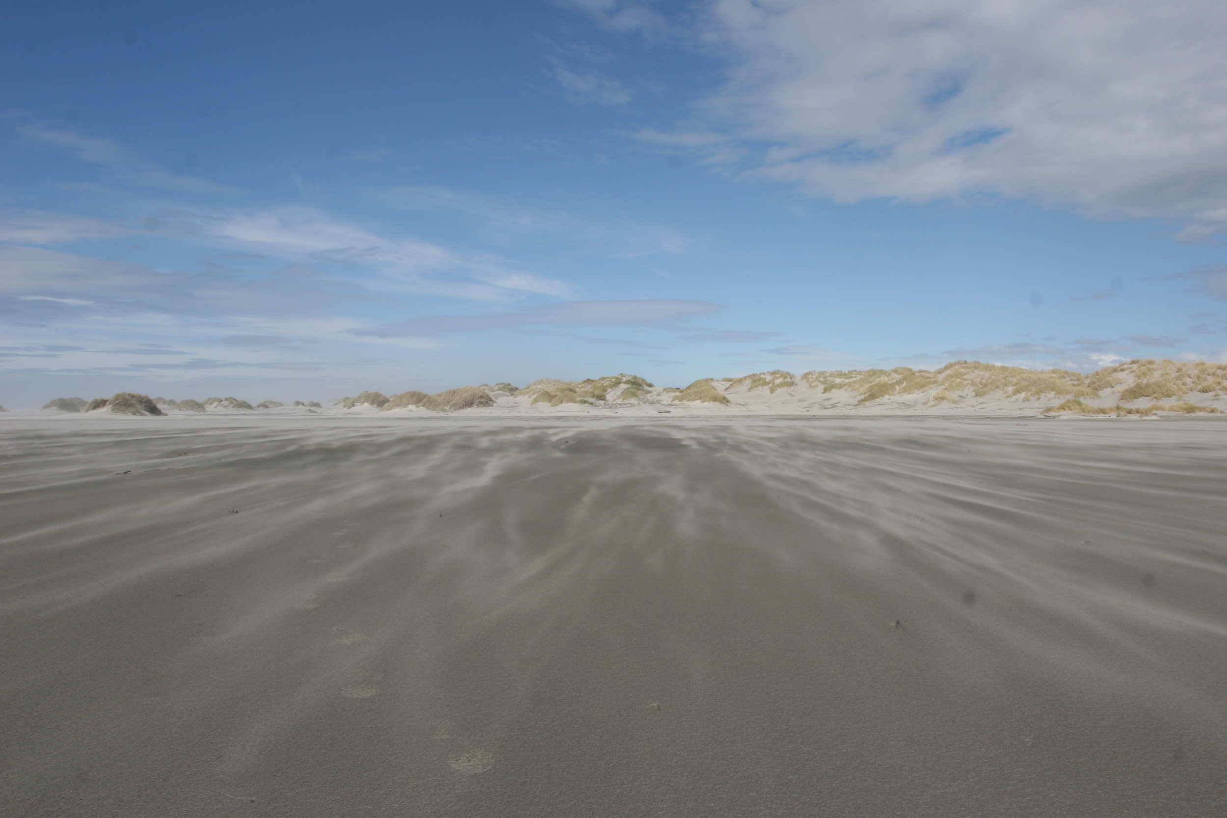 Farewell Spit, South Island, New Zealand