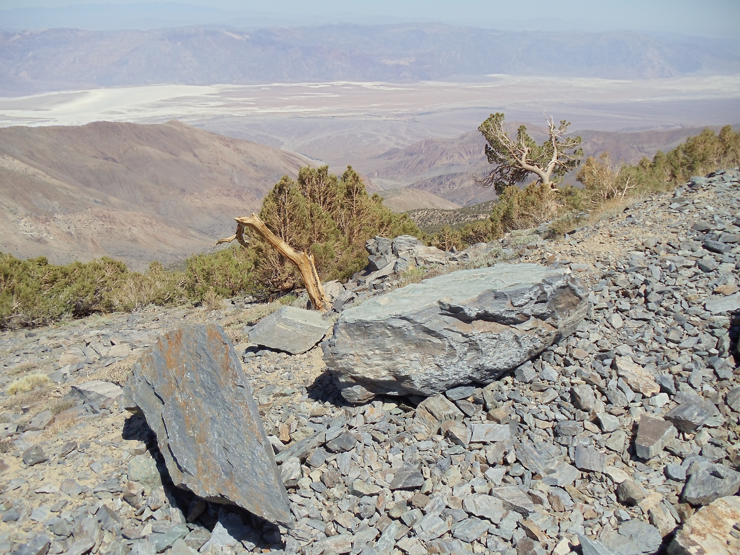 Looking into Death Valley from the Fire Access road on Rogers' Peak
