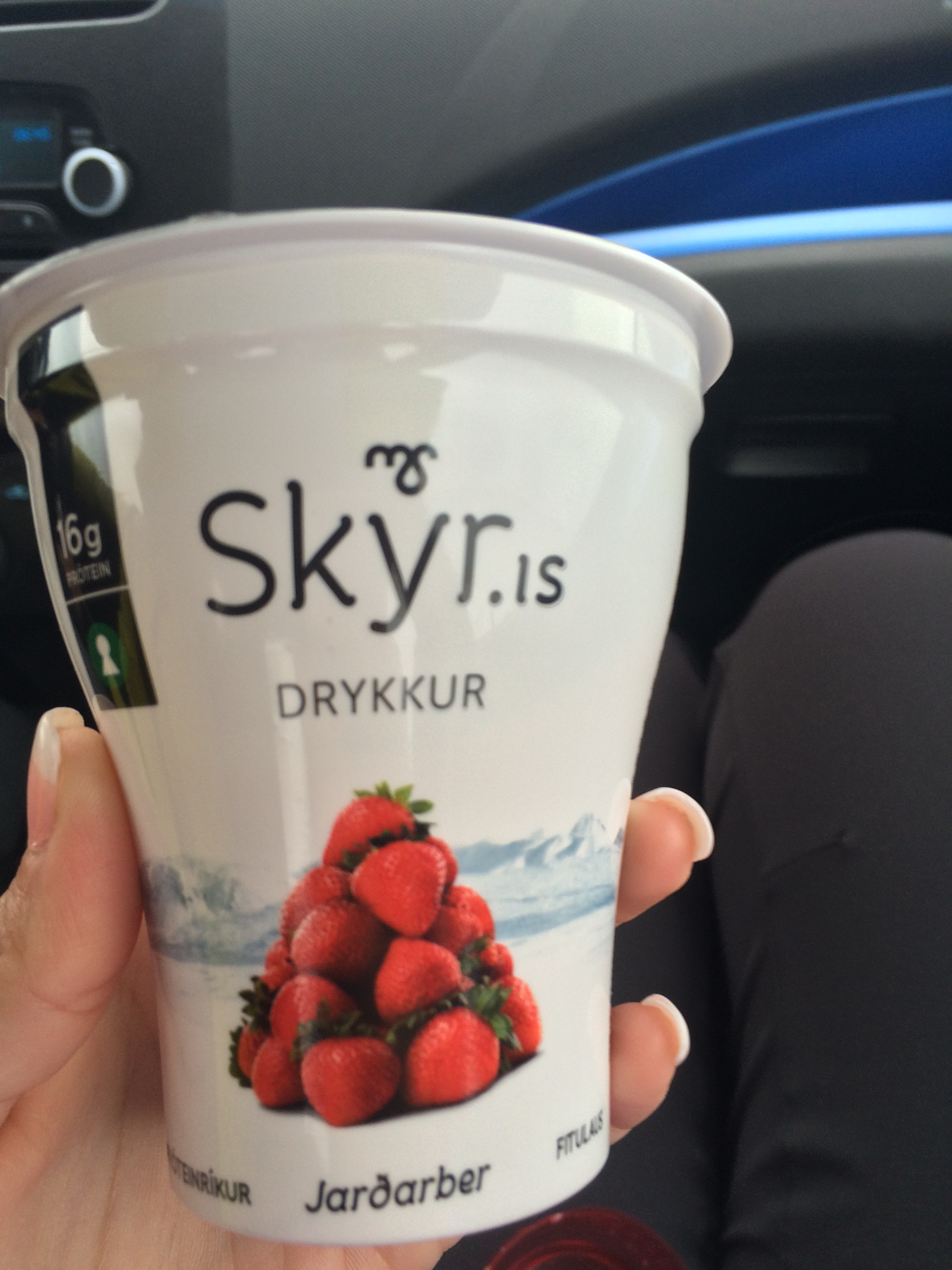 Skyr: good for a meal, or just a quick snack. One of many Icelandic delicacies one should try!