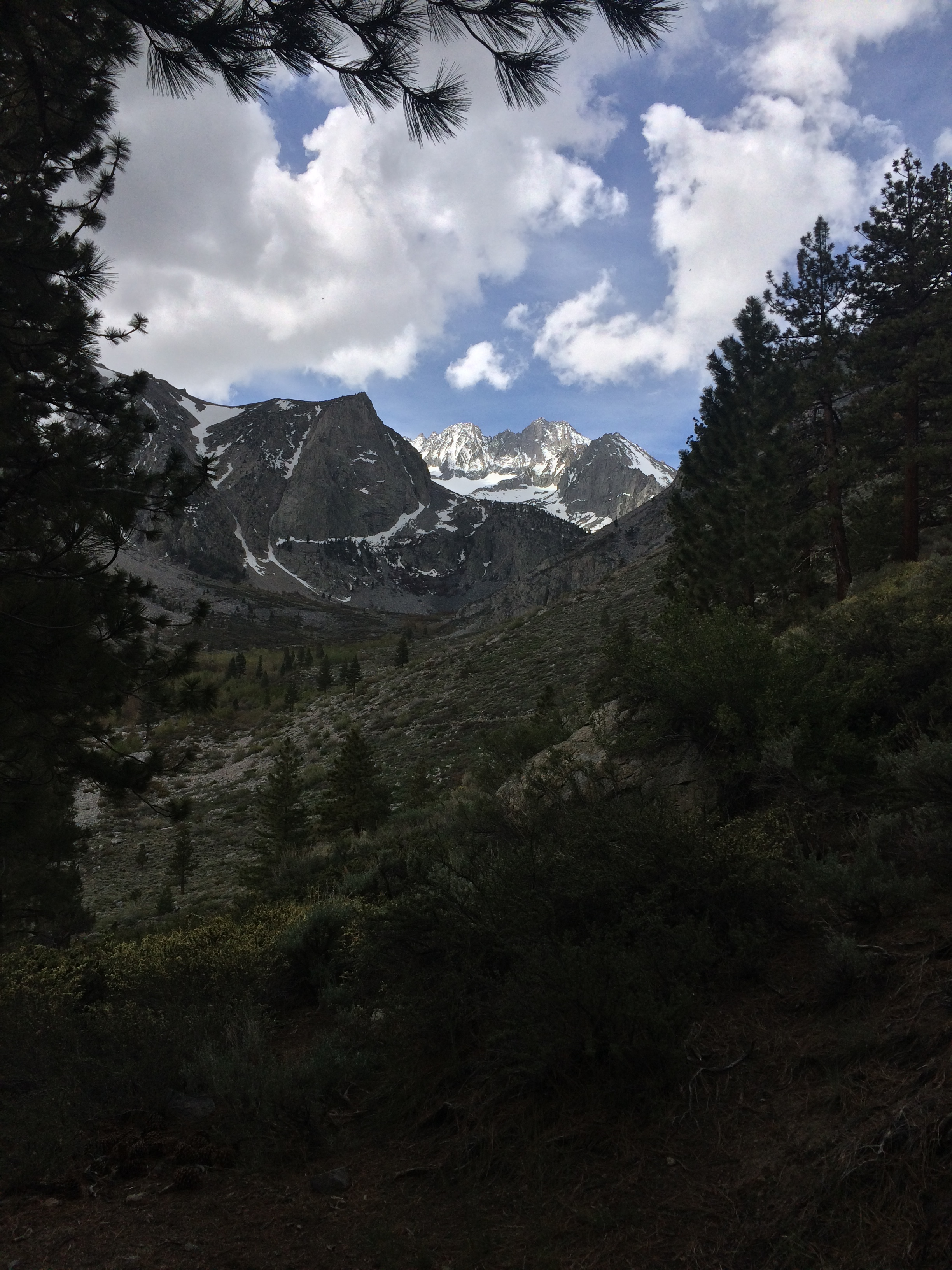 From the beginning, the North Fork trail of Big Pine Creek provides stunning views.
