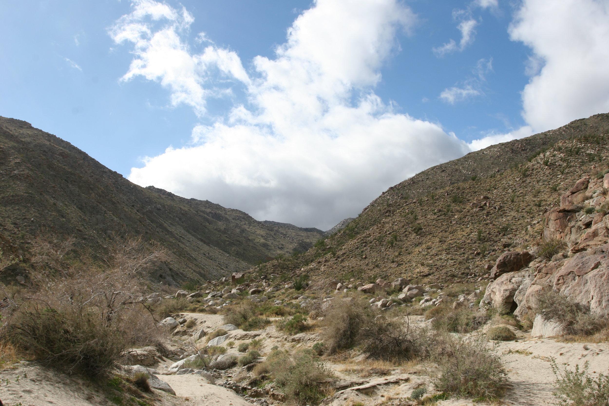 The Anza-Borrego Desert: potentially home to Southern California's own bigfoot.