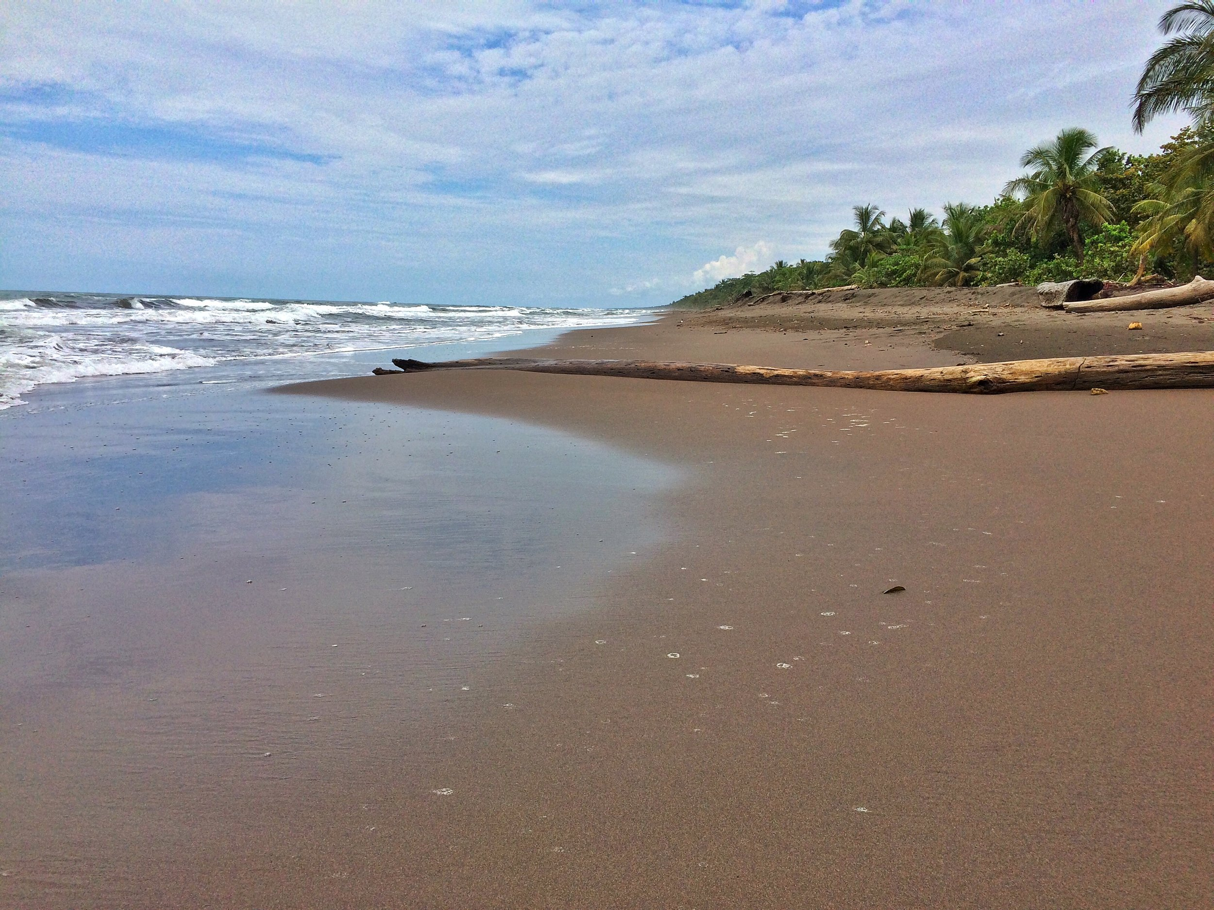 Tortuguero National Park along Costa Rica's Atlantic Coast has stunning jungle bordered beaches.
