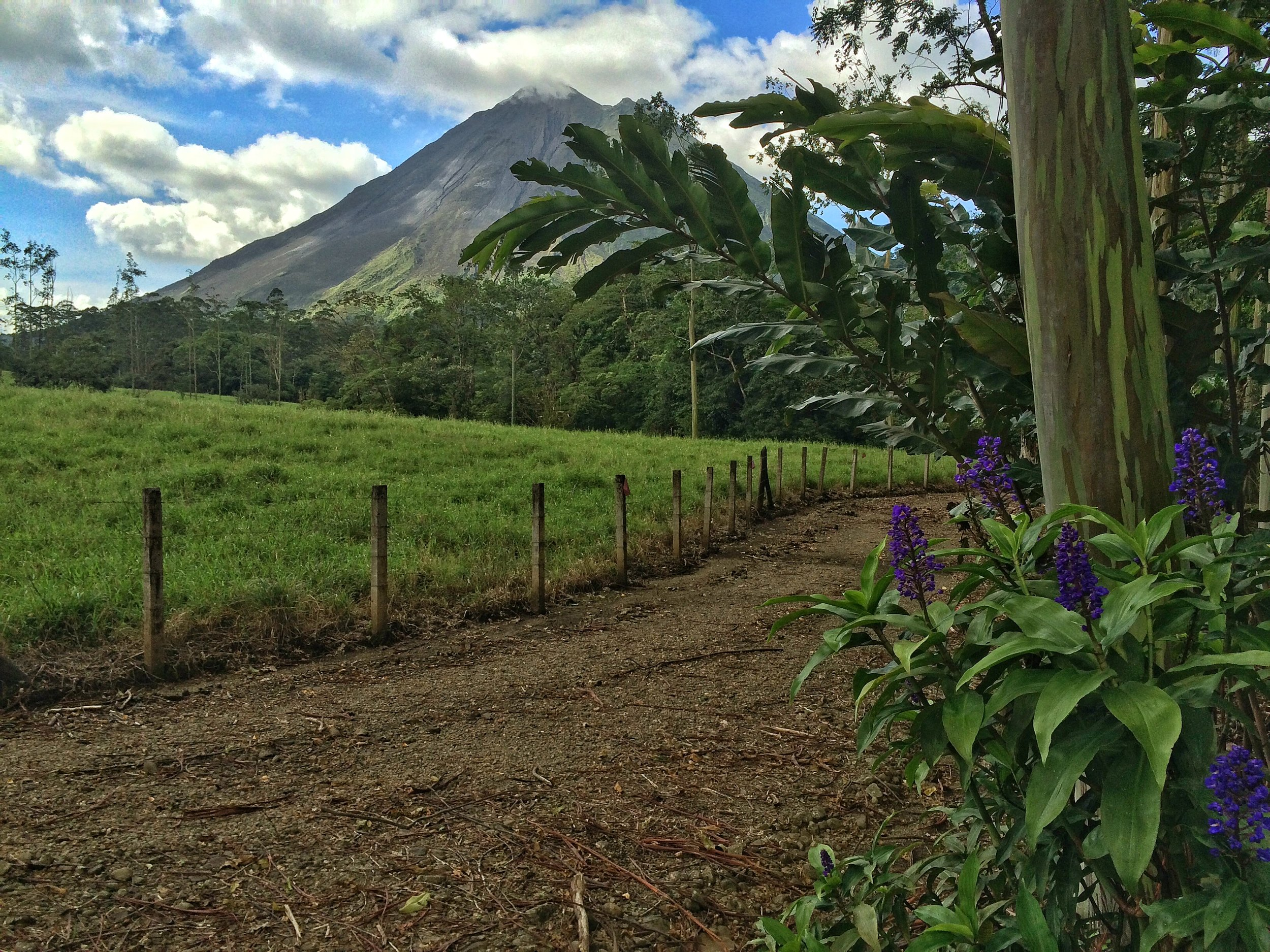 The area around Arenal Volcano is full of hiking and adventure opportunities for all skill levels.