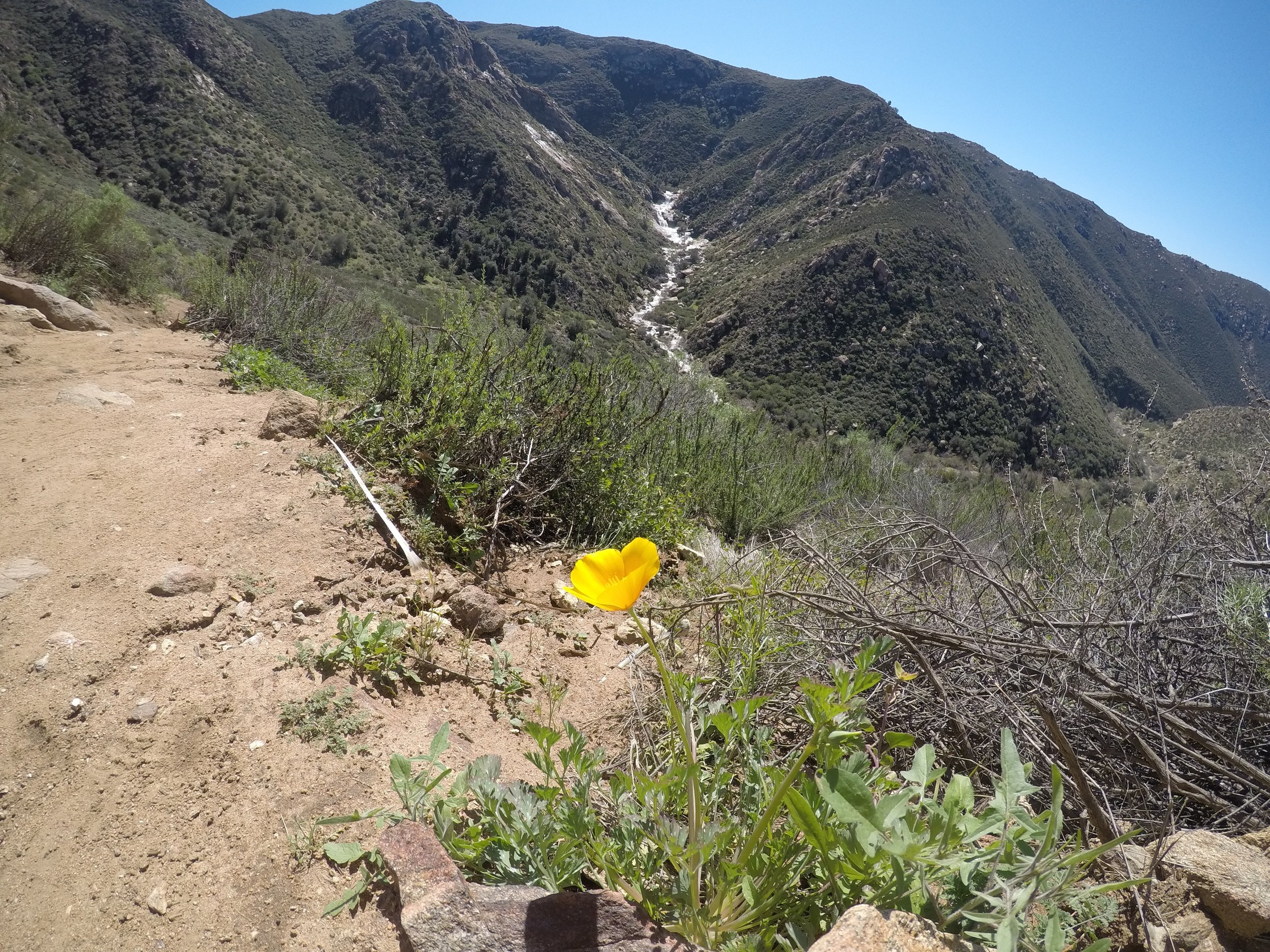The hike to Three Sisters features a steep downhill descent to the falls, and a steep uphill ascent to the trailhead.