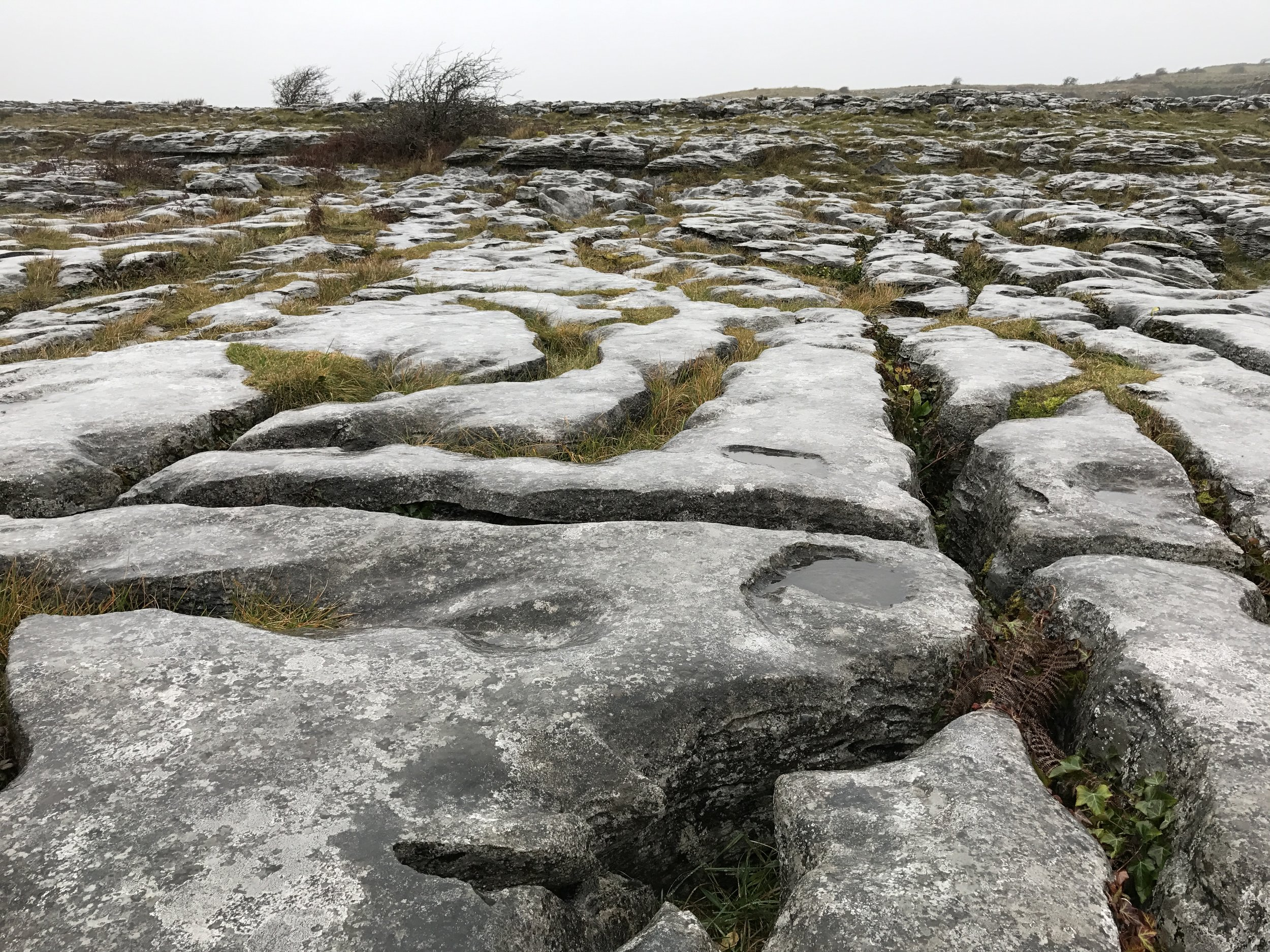Poulnabrone is located in the Burren portion of Ireland, which has geologic features unlike the rest of the island.