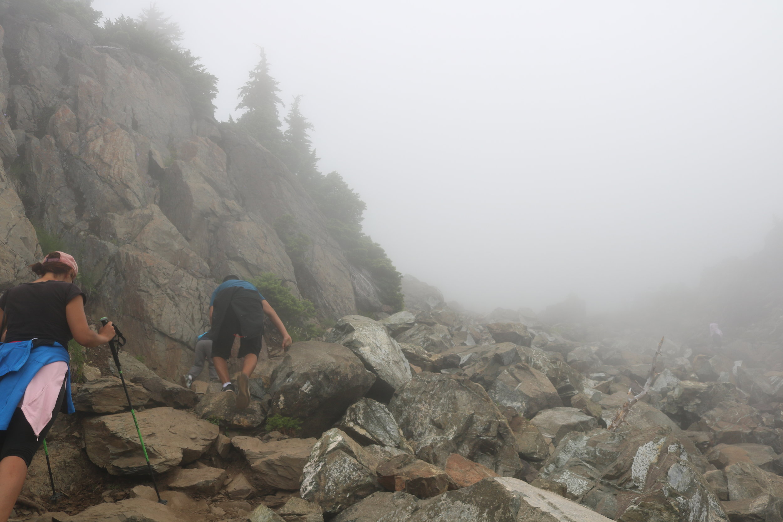 At times, during this section, there may be some scrambling required to ascend to the summit of Mount Ellinor.