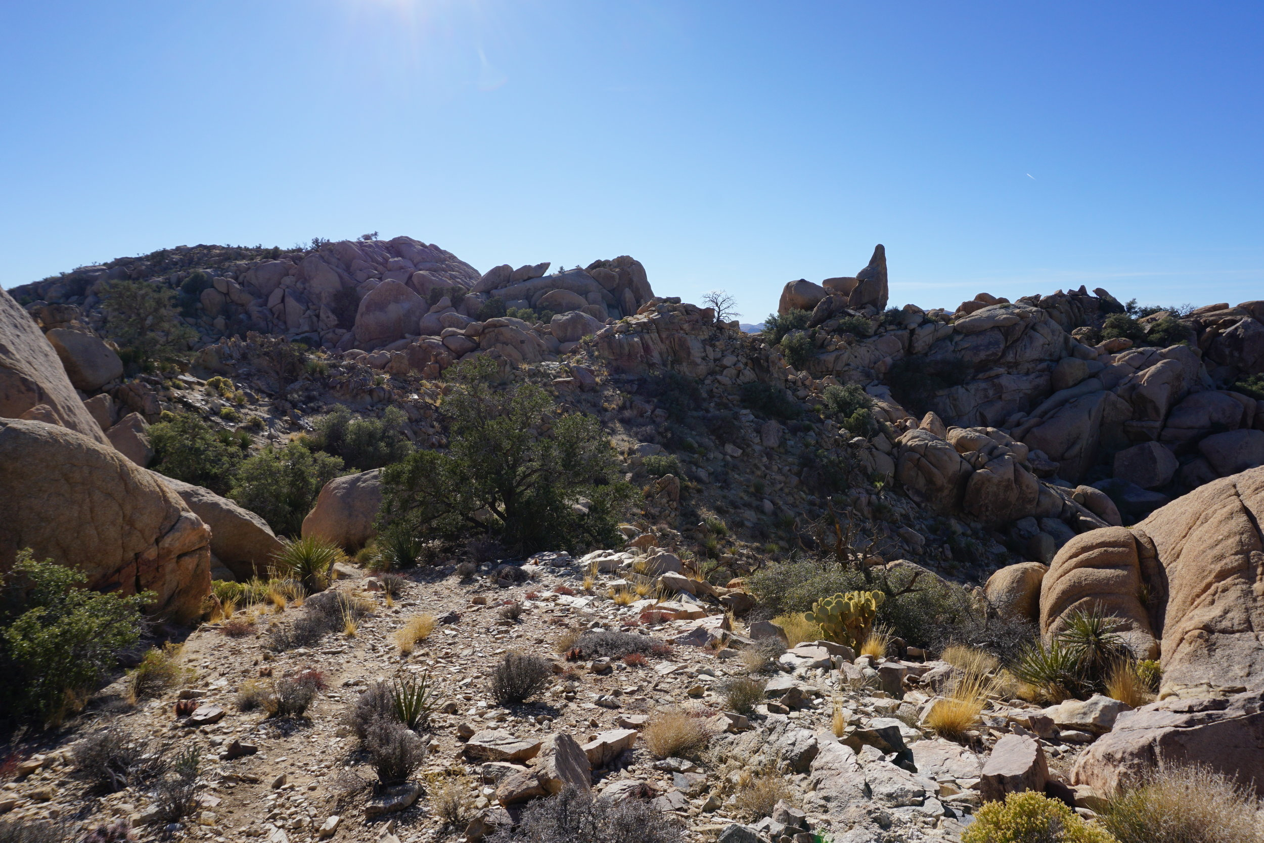 The trail to the Eagle Cliff Mine passes through some of the most beautiful terrain in Joshua Tree National Park.