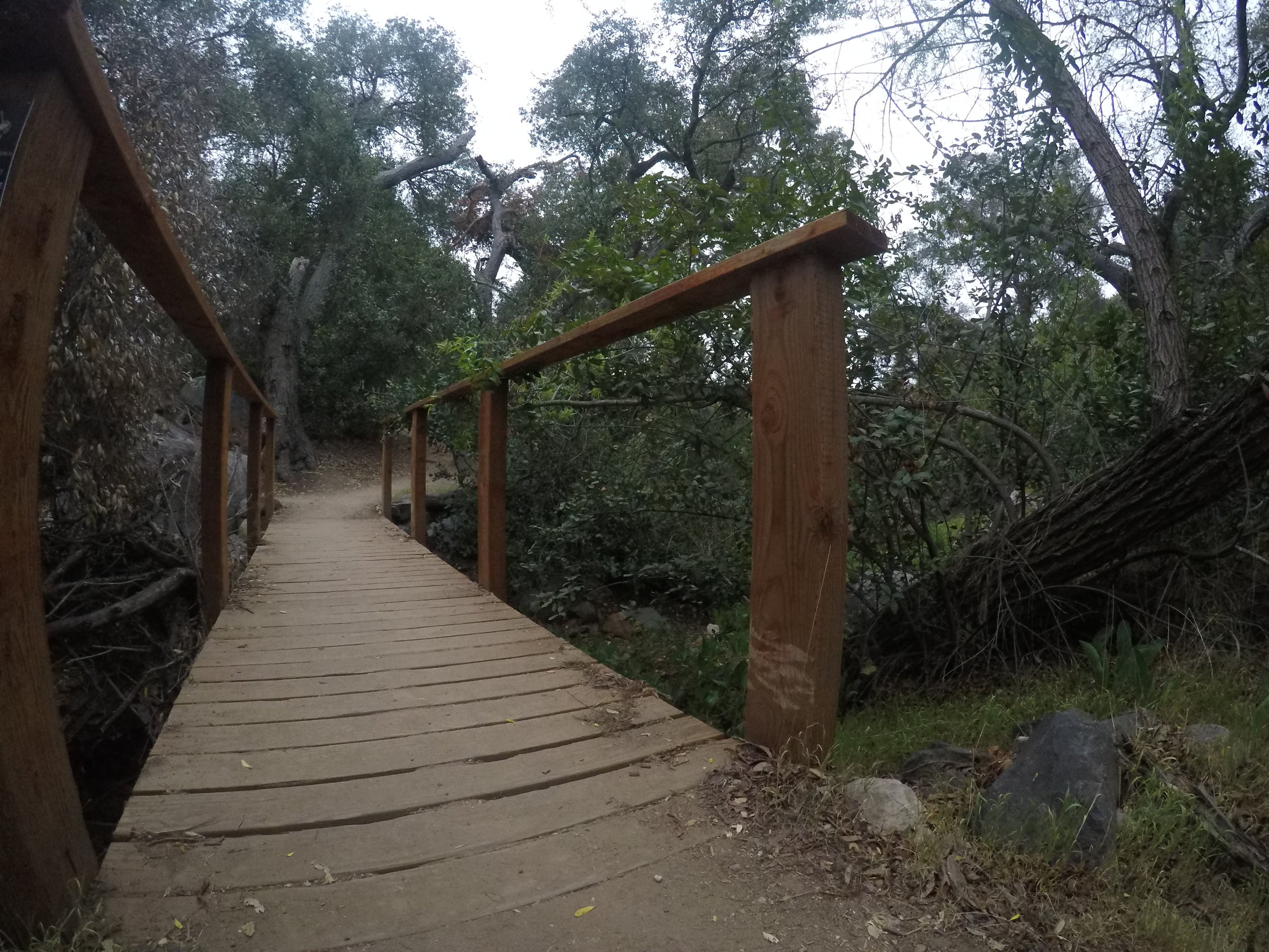 After heading up for a short distance, the route descends into Suycott Valley, and Suycott Wash, which is a peaceful,green area of the park.