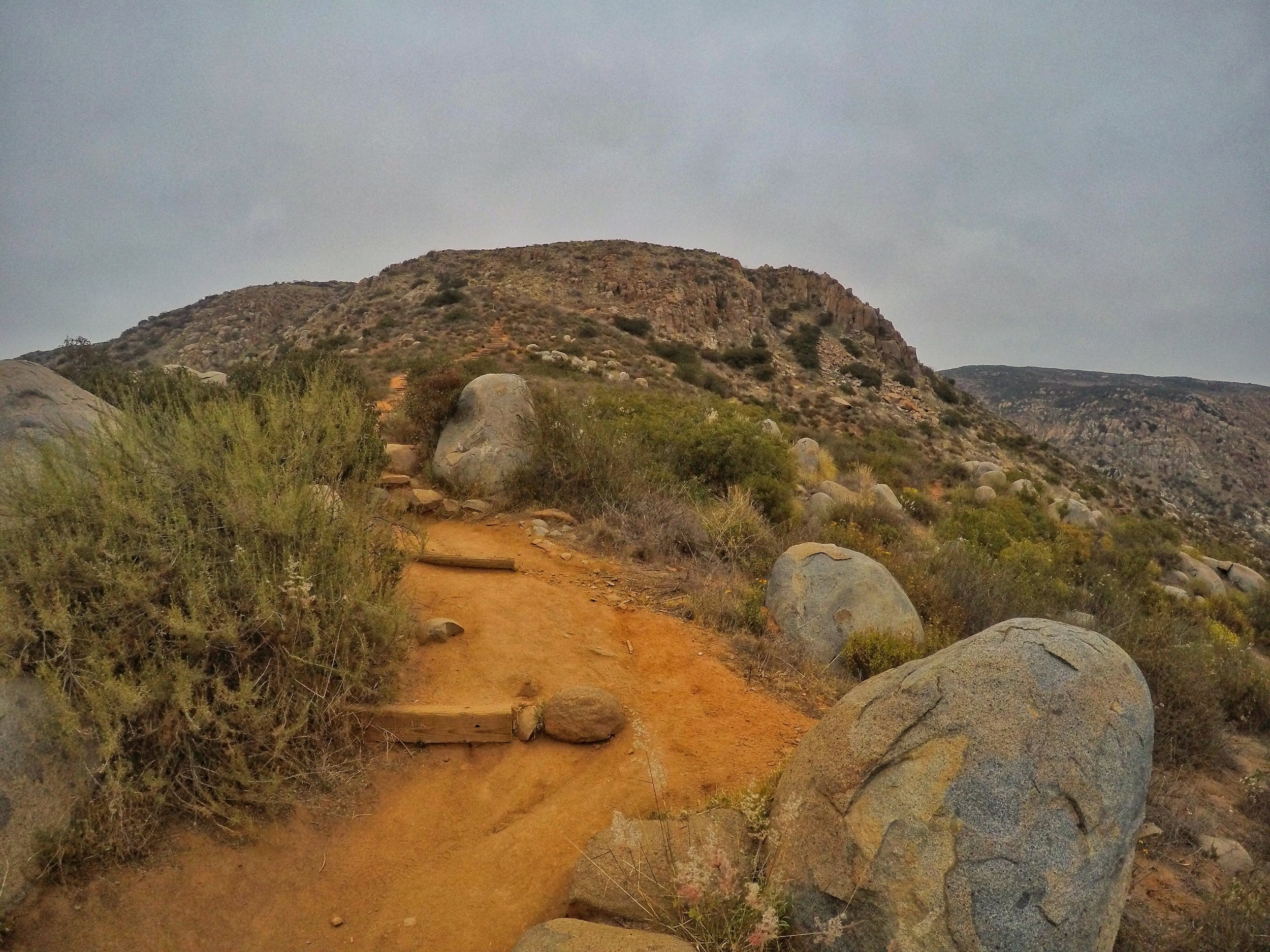 """Once out of Suycott Wash, however, the trail ascends, before reaching a very steep section with wooden """"steps""""."""