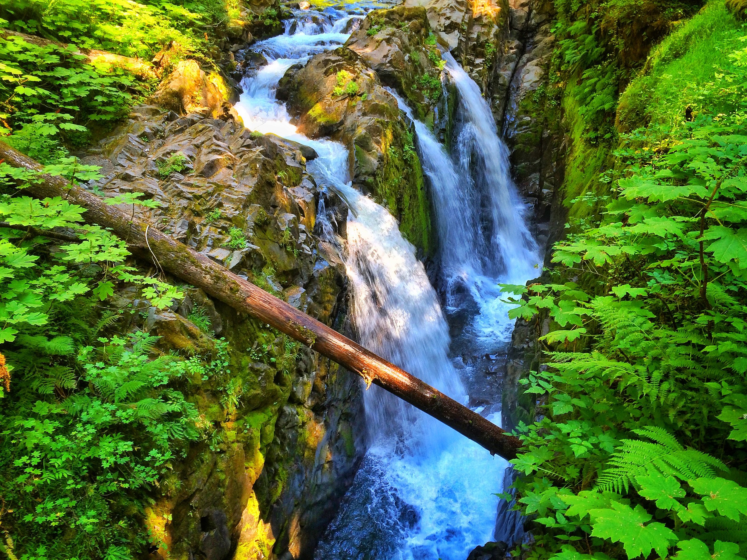 The Olympic peninsula also features some of the best waterfalls in the State of Washington, including Sol duc Falls.