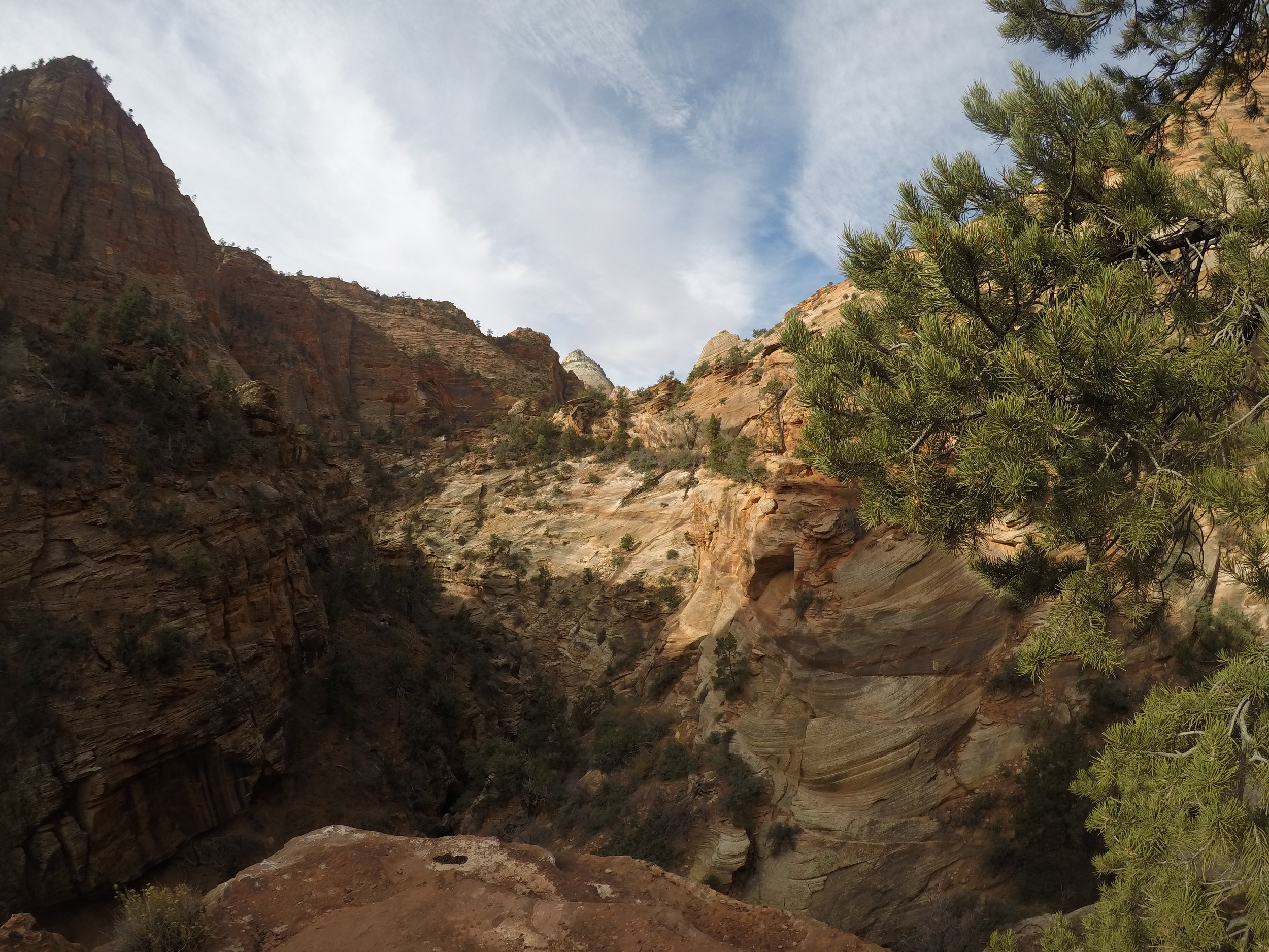 Along the trail, there are great views into Pine Creek Canyon.