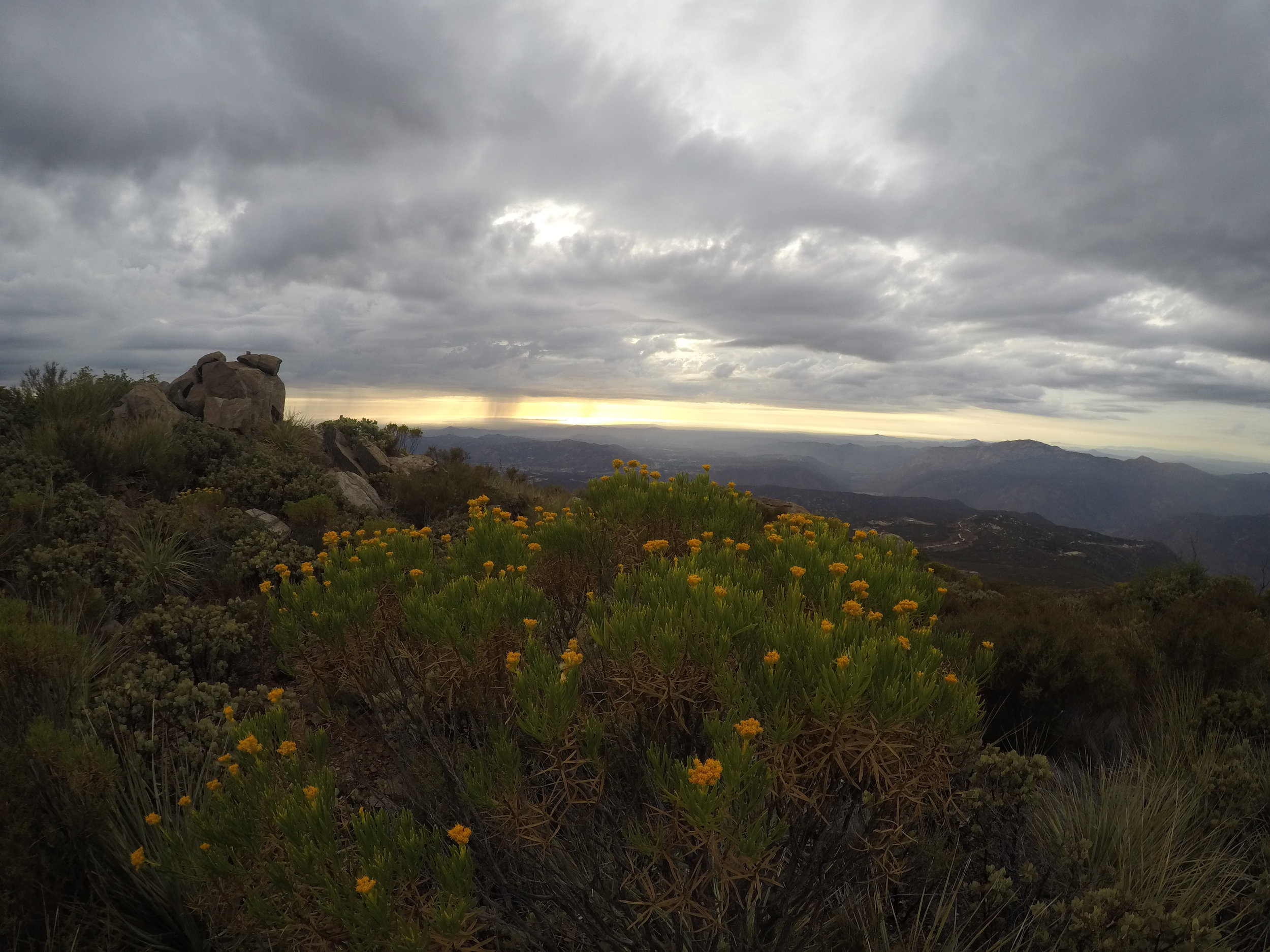 Viejas Mountain is also one of the less trafficked peaks in the Cleveland National Forest, which provides a great deal of solitude for a hiker.