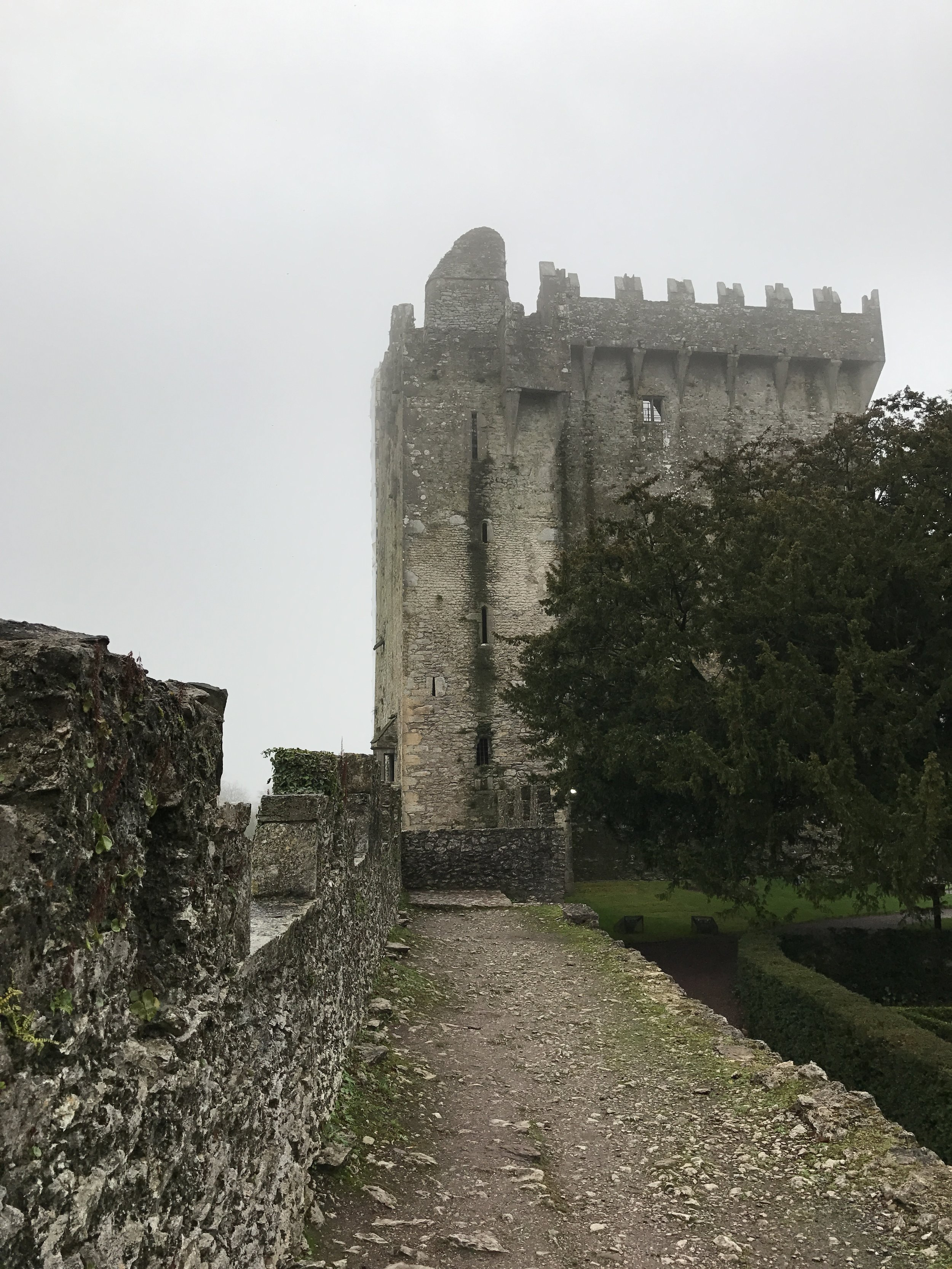 Without question, Blarney Castle is Ireland's most well-known medieval fortress.