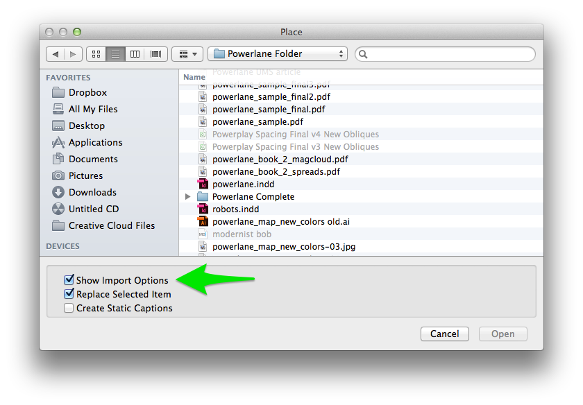 """The """"Show Import Options"""" check box is located in the bottom section of the box and is selected in this screenshot."""