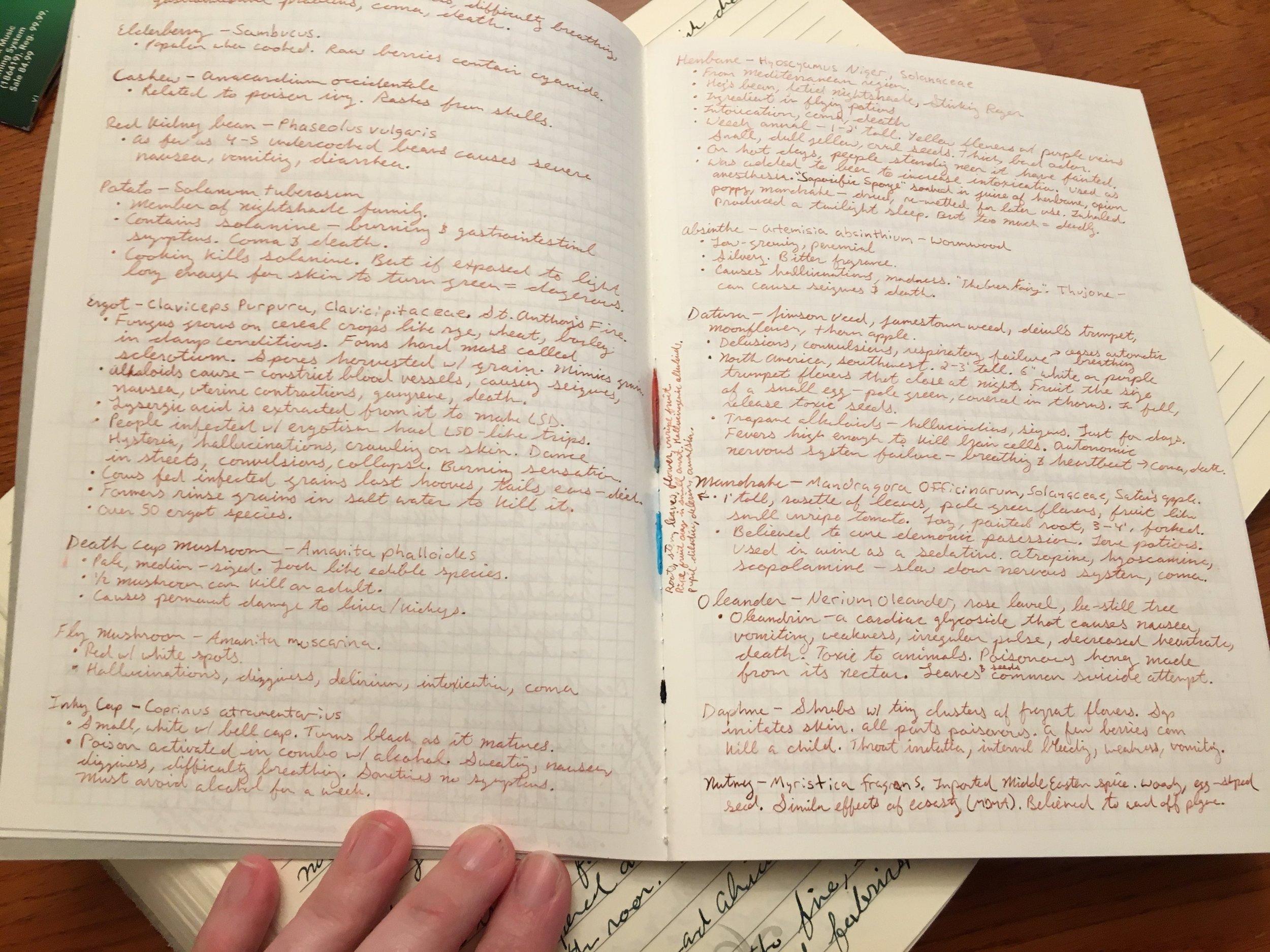 graphilo notes.JPG
