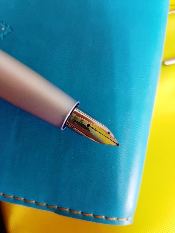 Aion Nib Closeup.jpg