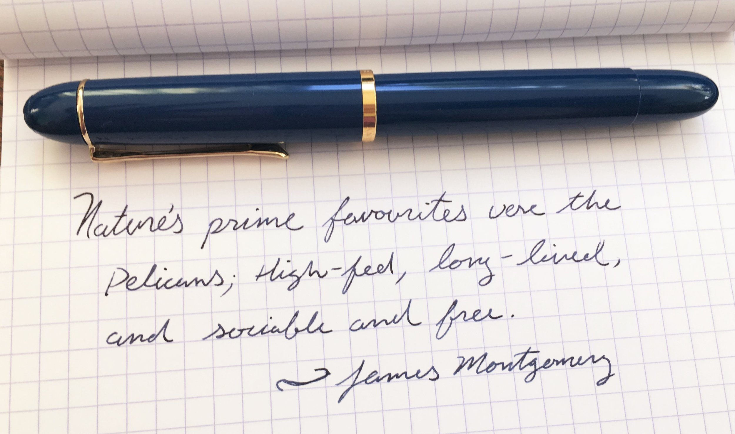 Pelikan Classic M120 Iconic Blue Writing