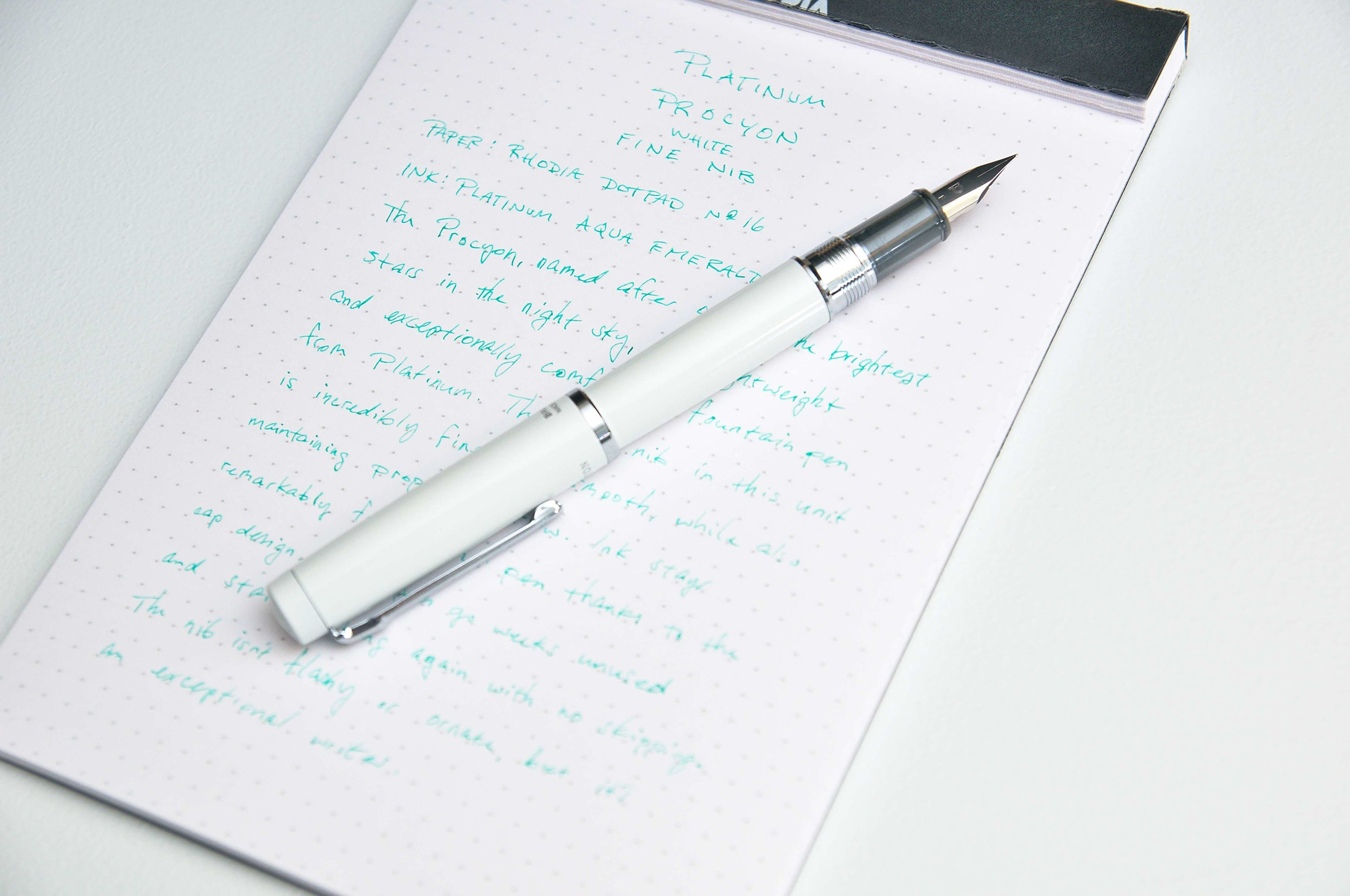 Platinum Procyon Fountain Pen