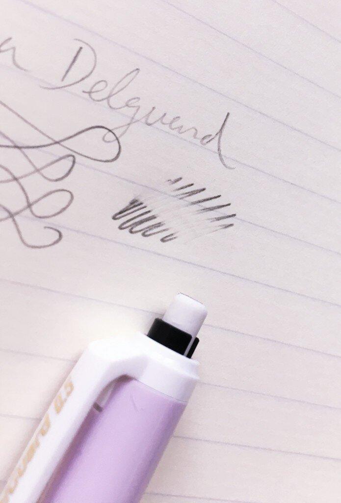 Zebra DelGuard Eraser