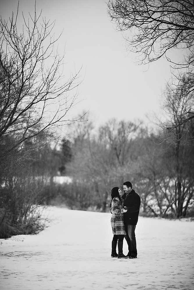 Beautiful Toronto Engagement Photography