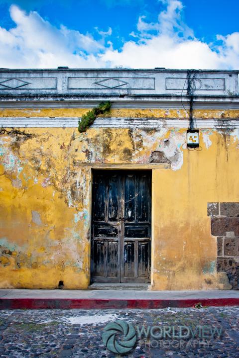 GUA ANT visit 201112 -7451.jpg