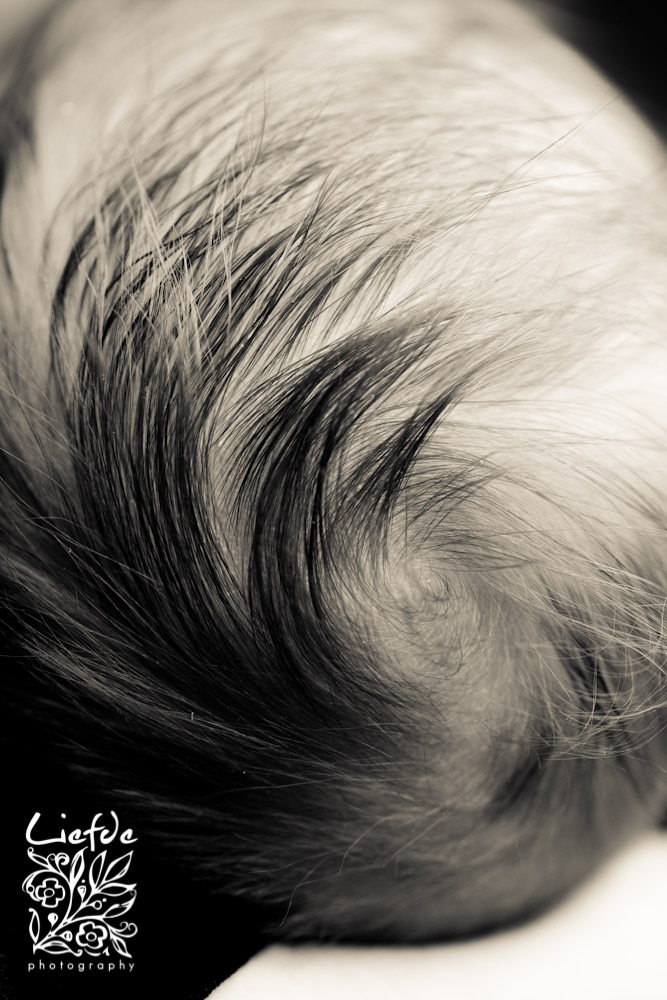 liefdephoto-0927-20110127.jpg