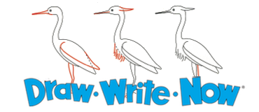 Our Books: Draw Write Now