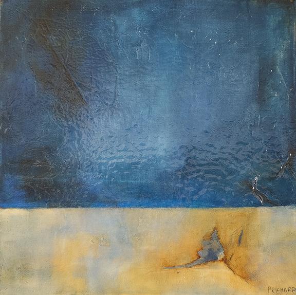 """Borrego"" 12x12"" Stretched Canvas"