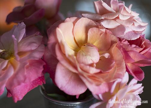 rose tones color.jpg